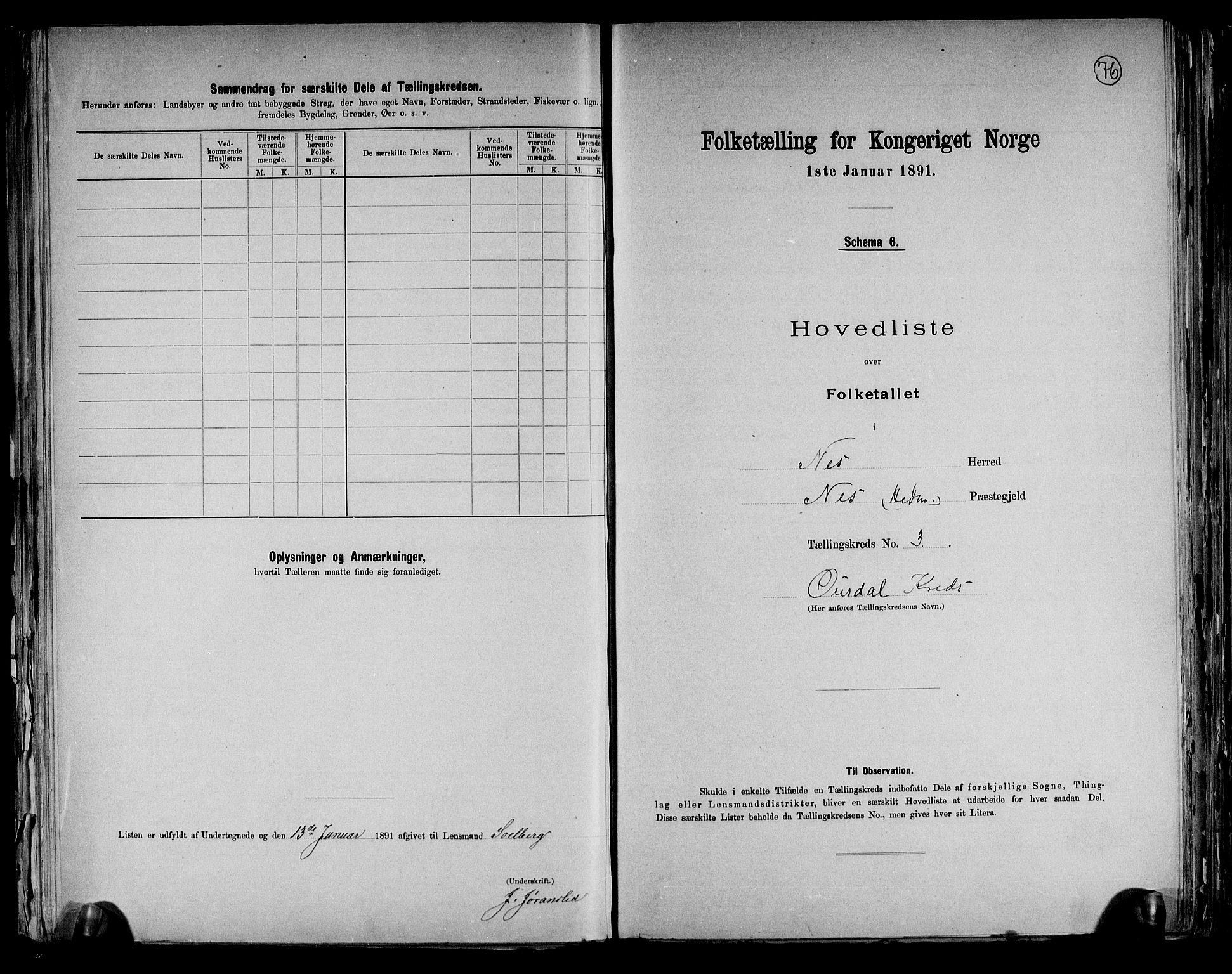 RA, Folketelling 1891 for 0411 Nes herred, 1891, s. 12