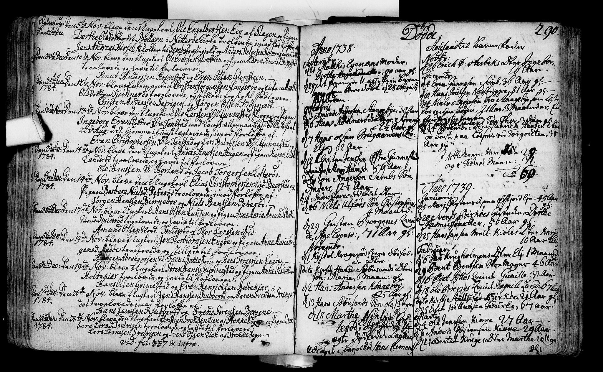 SAKO, Nøtterøy kirkebøker, F/Fa/L0002: Ministerialbok nr. I 2, 1738-1790, s. 290