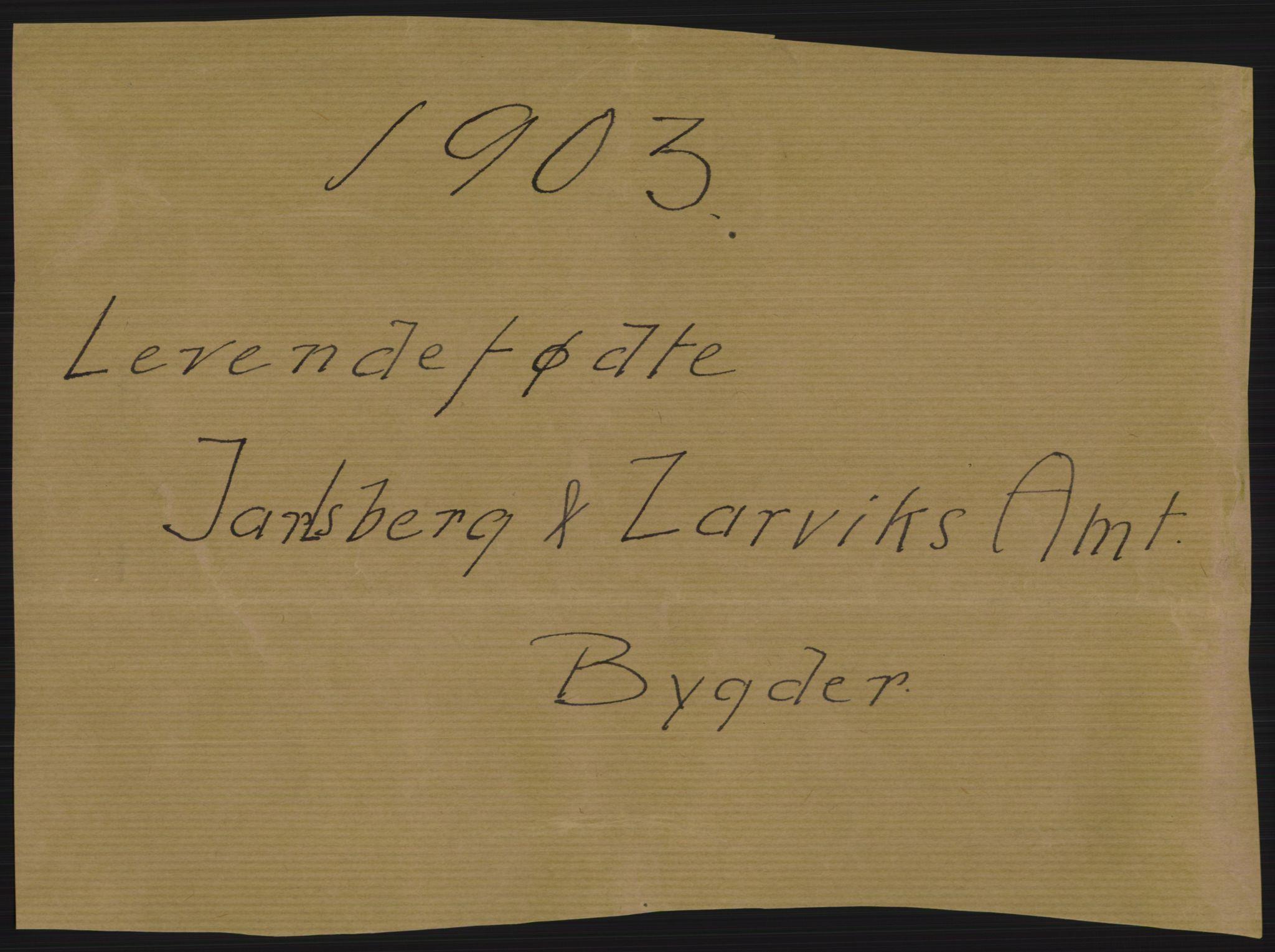 RA, Statistisk sentralbyrå, Sosiodemografiske emner, Befolkning, D/Df/Dfa/Dfaa/L0008: Jarlsberg og Larvik amt: Fødte, gifte, døde, 1903