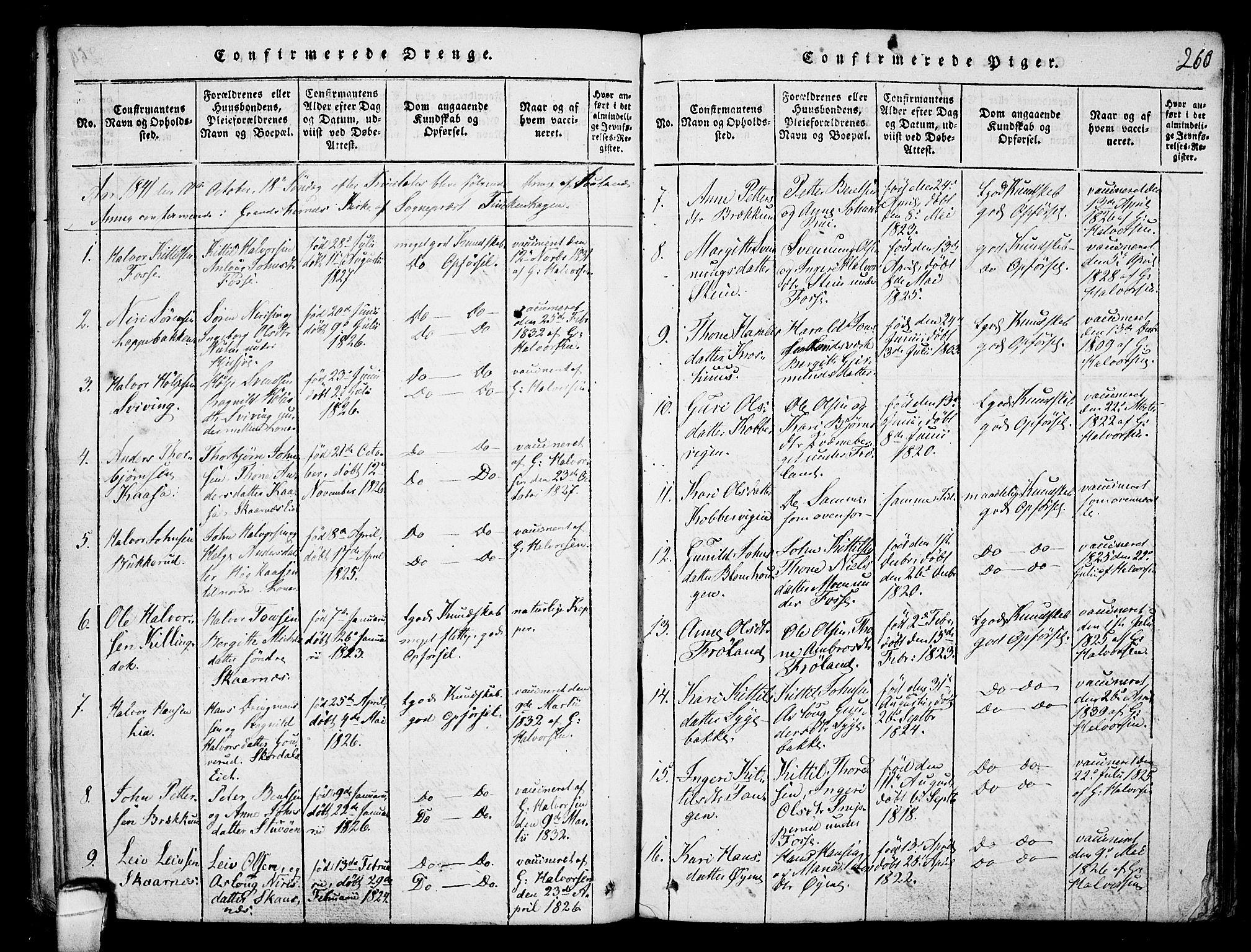 SAKO, Hjartdal kirkebøker, F/Fb/L0001: Ministerialbok nr. II 1, 1815-1843, s. 260