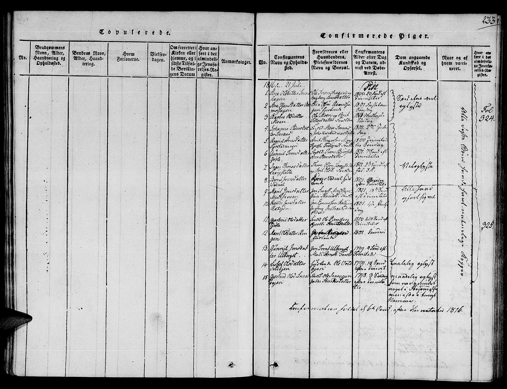 SAT, Ministerialprotokoller, klokkerbøker og fødselsregistre - Sør-Trøndelag, 672/L0853: Ministerialbok nr. 672A06 /1, 1816-1829, s. 233