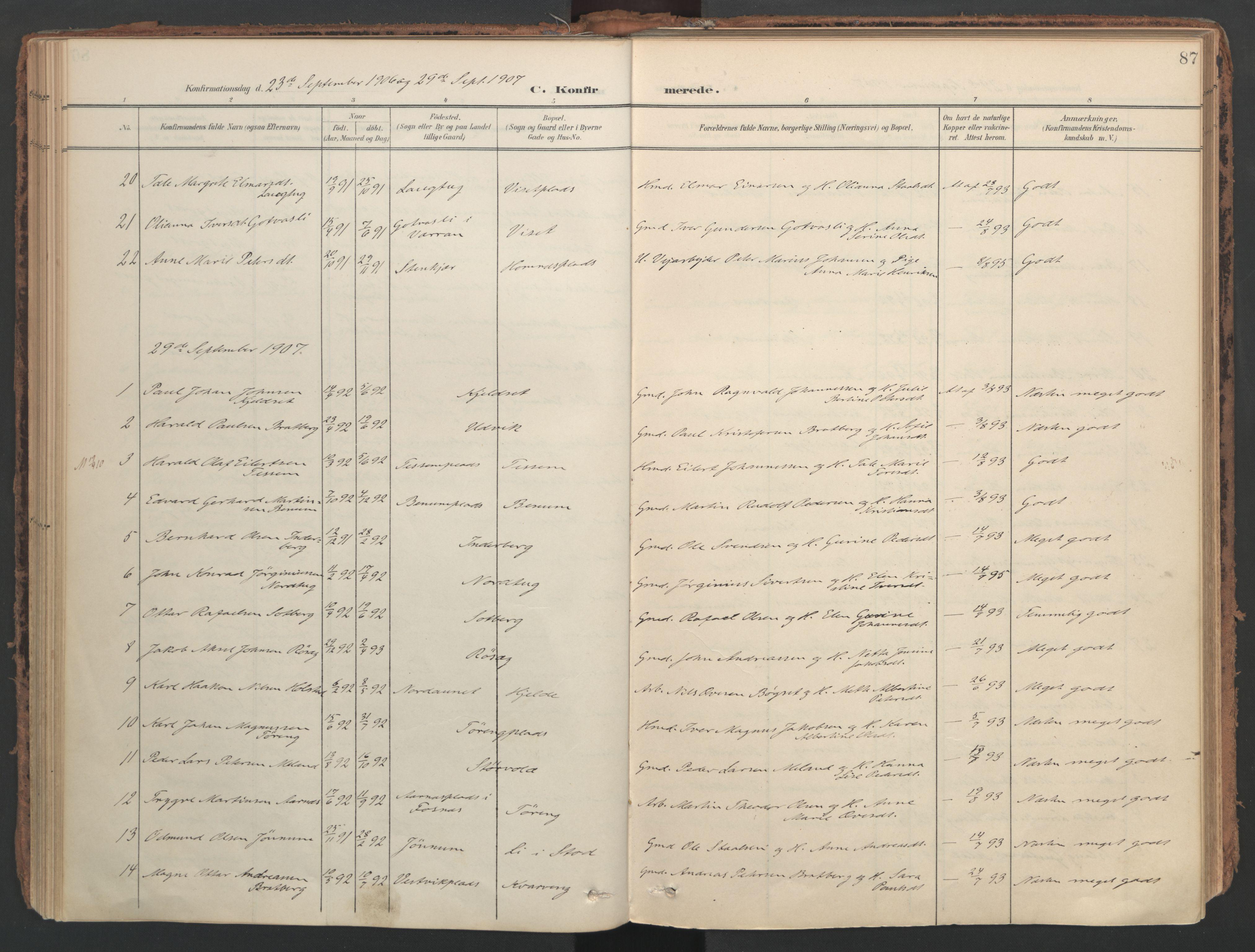 SAT, Ministerialprotokoller, klokkerbøker og fødselsregistre - Nord-Trøndelag, 741/L0397: Ministerialbok nr. 741A11, 1901-1911, s. 87