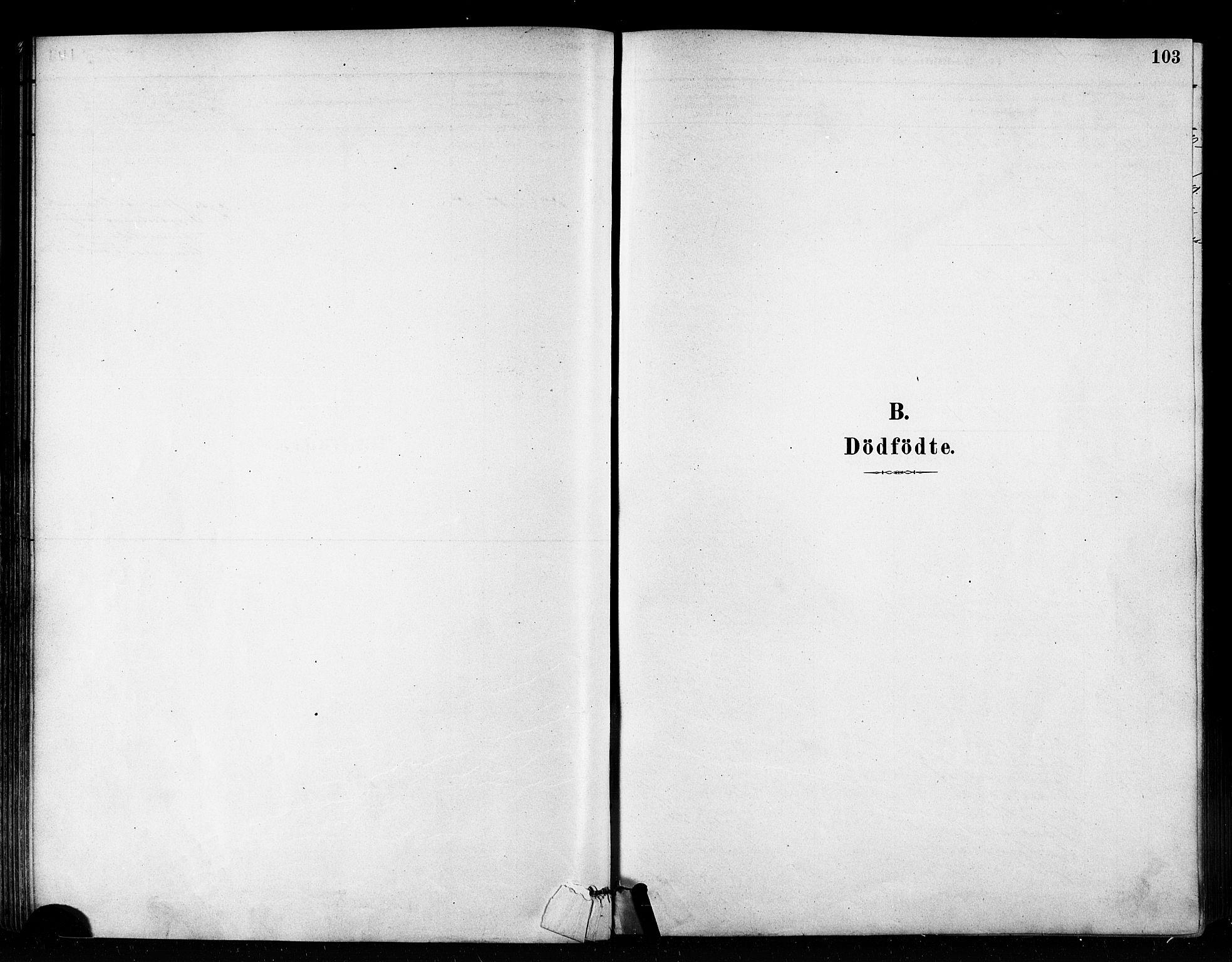 SATØ, Vardø sokneprestkontor, H/Ha/L0006kirke: Ministerialbok nr. 6, 1879-1886, s. 103