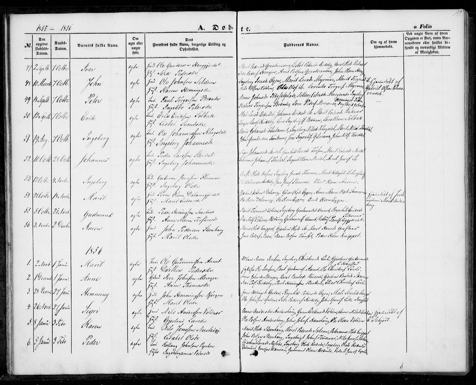 SAT, Ministerialprotokoller, klokkerbøker og fødselsregistre - Nord-Trøndelag, 706/L0040: Ministerialbok nr. 706A01, 1850-1861, s. 19