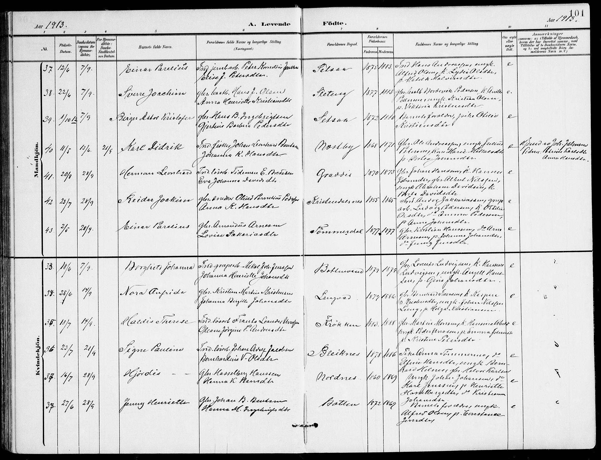 SAT, Ministerialprotokoller, klokkerbøker og fødselsregistre - Nordland, 847/L0672: Ministerialbok nr. 847A12, 1902-1919, s. 101
