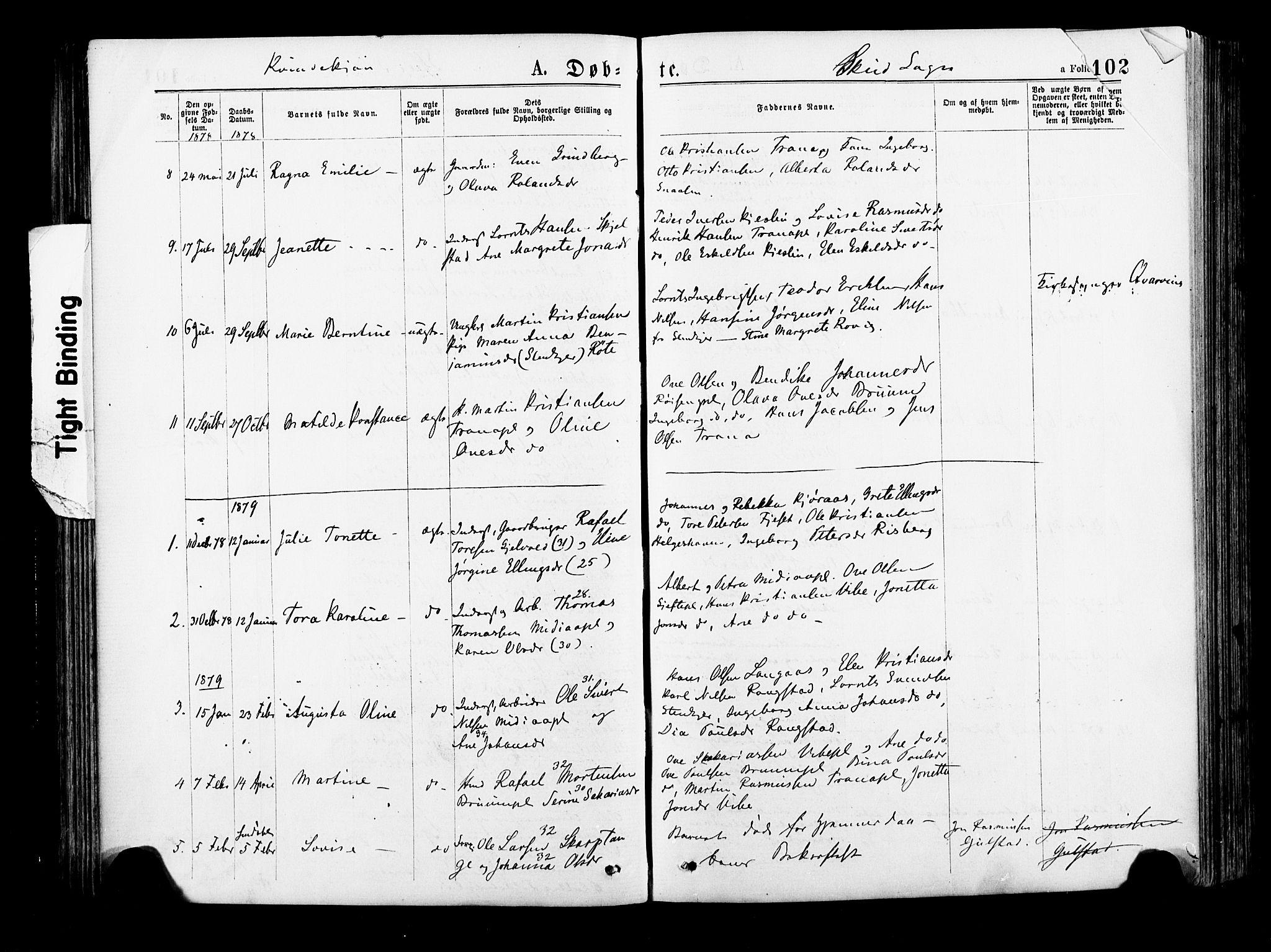 SAT, Ministerialprotokoller, klokkerbøker og fødselsregistre - Nord-Trøndelag, 735/L0348: Ministerialbok nr. 735A09 /2, 1873-1883, s. 102