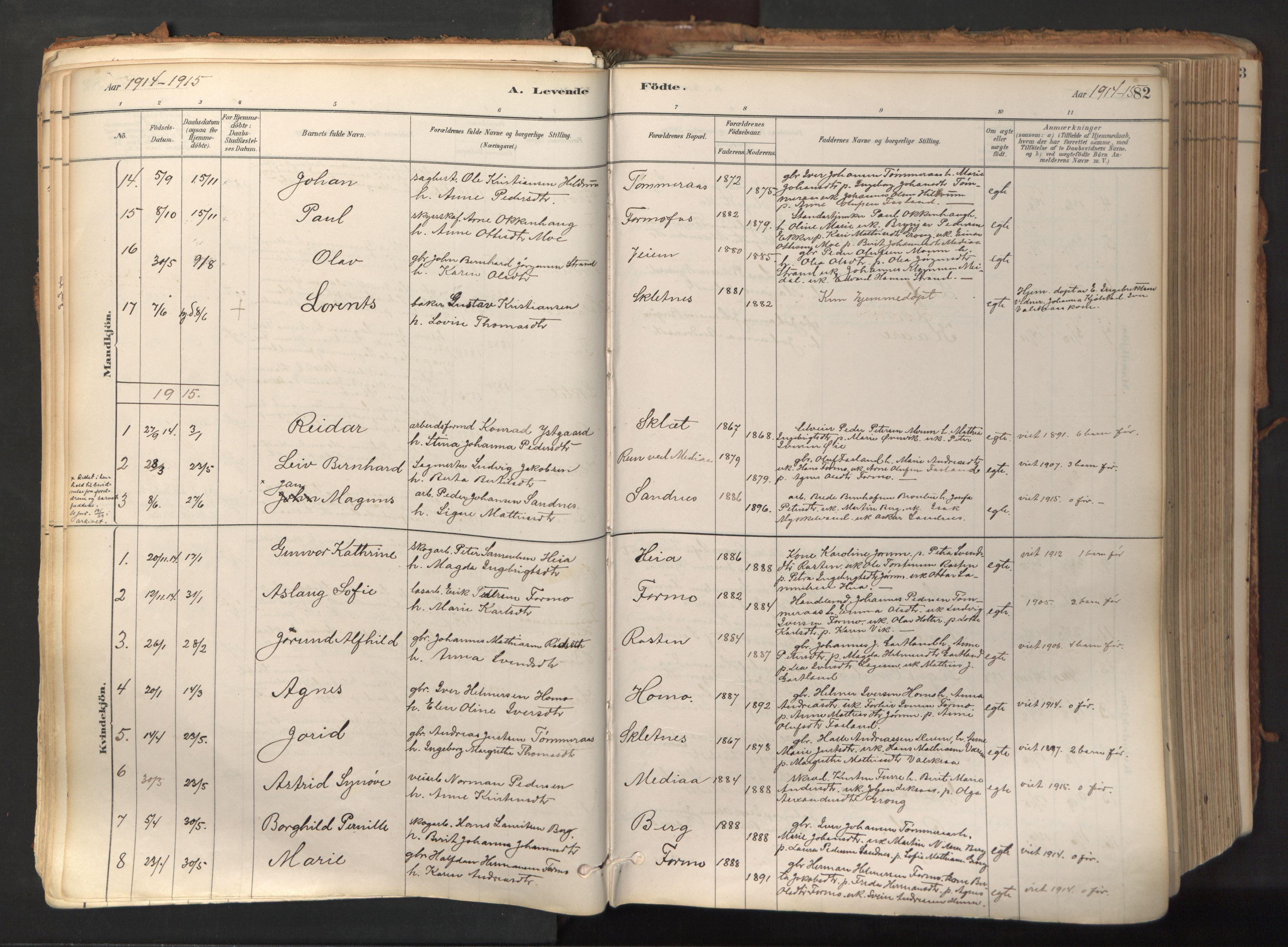 SAT, Ministerialprotokoller, klokkerbøker og fødselsregistre - Nord-Trøndelag, 758/L0519: Ministerialbok nr. 758A04, 1880-1926, s. 82