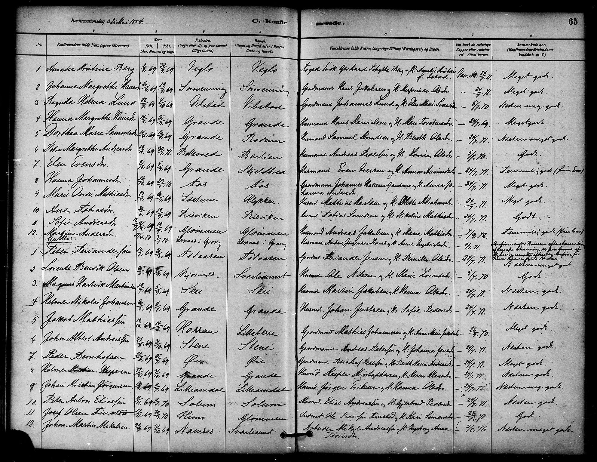 SAT, Ministerialprotokoller, klokkerbøker og fødselsregistre - Nord-Trøndelag, 764/L0555: Ministerialbok nr. 764A10, 1881-1896, s. 65