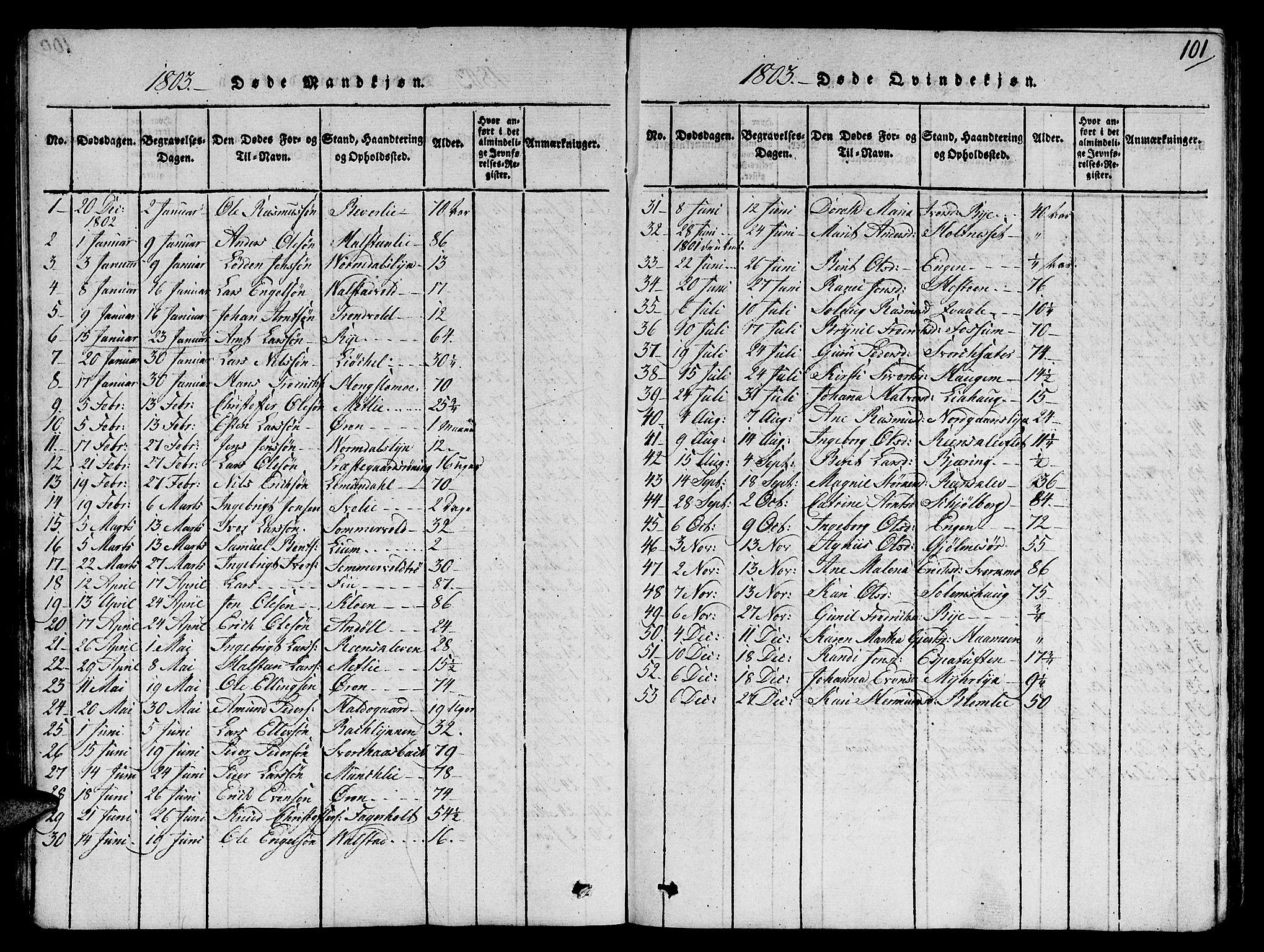 SAT, Ministerialprotokoller, klokkerbøker og fødselsregistre - Sør-Trøndelag, 668/L0803: Ministerialbok nr. 668A03, 1800-1826, s. 101