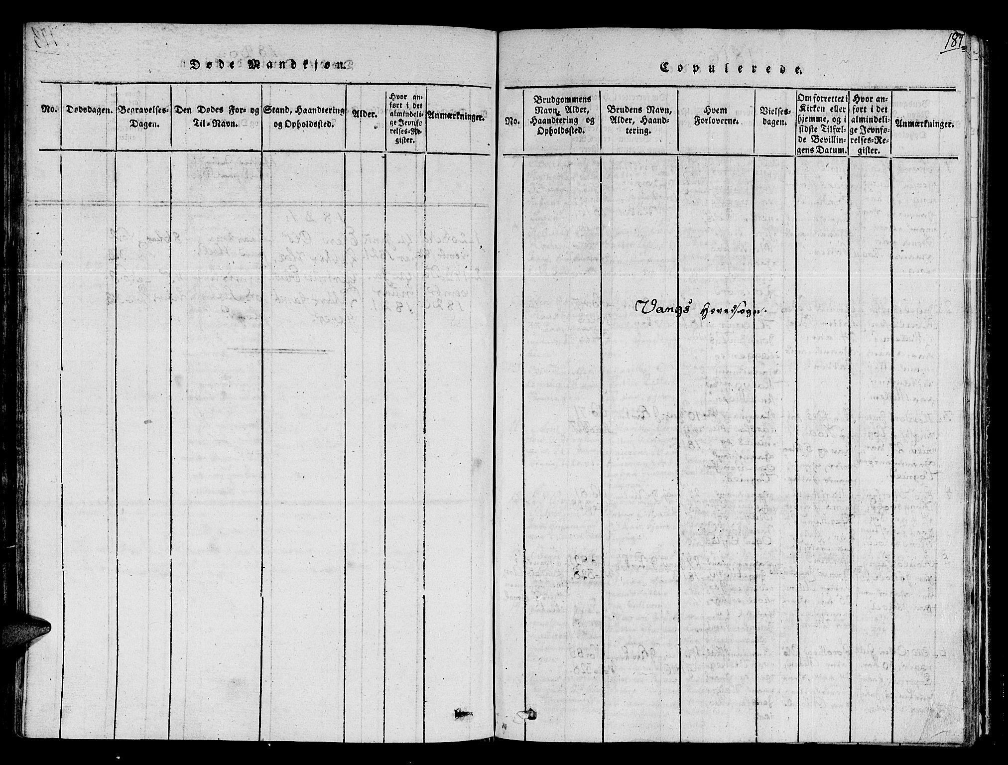 SAT, Ministerialprotokoller, klokkerbøker og fødselsregistre - Sør-Trøndelag, 678/L0895: Ministerialbok nr. 678A05 /1, 1816-1821, s. 187