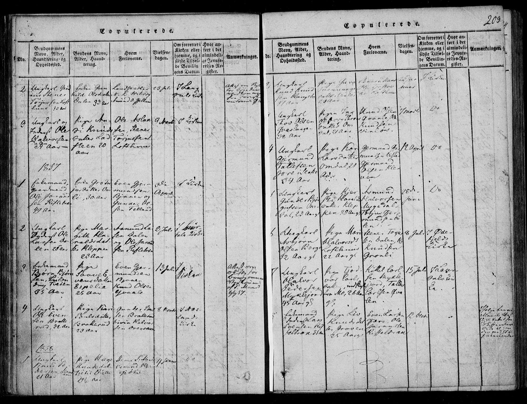SAKO, Lårdal kirkebøker, F/Fb/L0001: Ministerialbok nr. II 1, 1815-1860, s. 203
