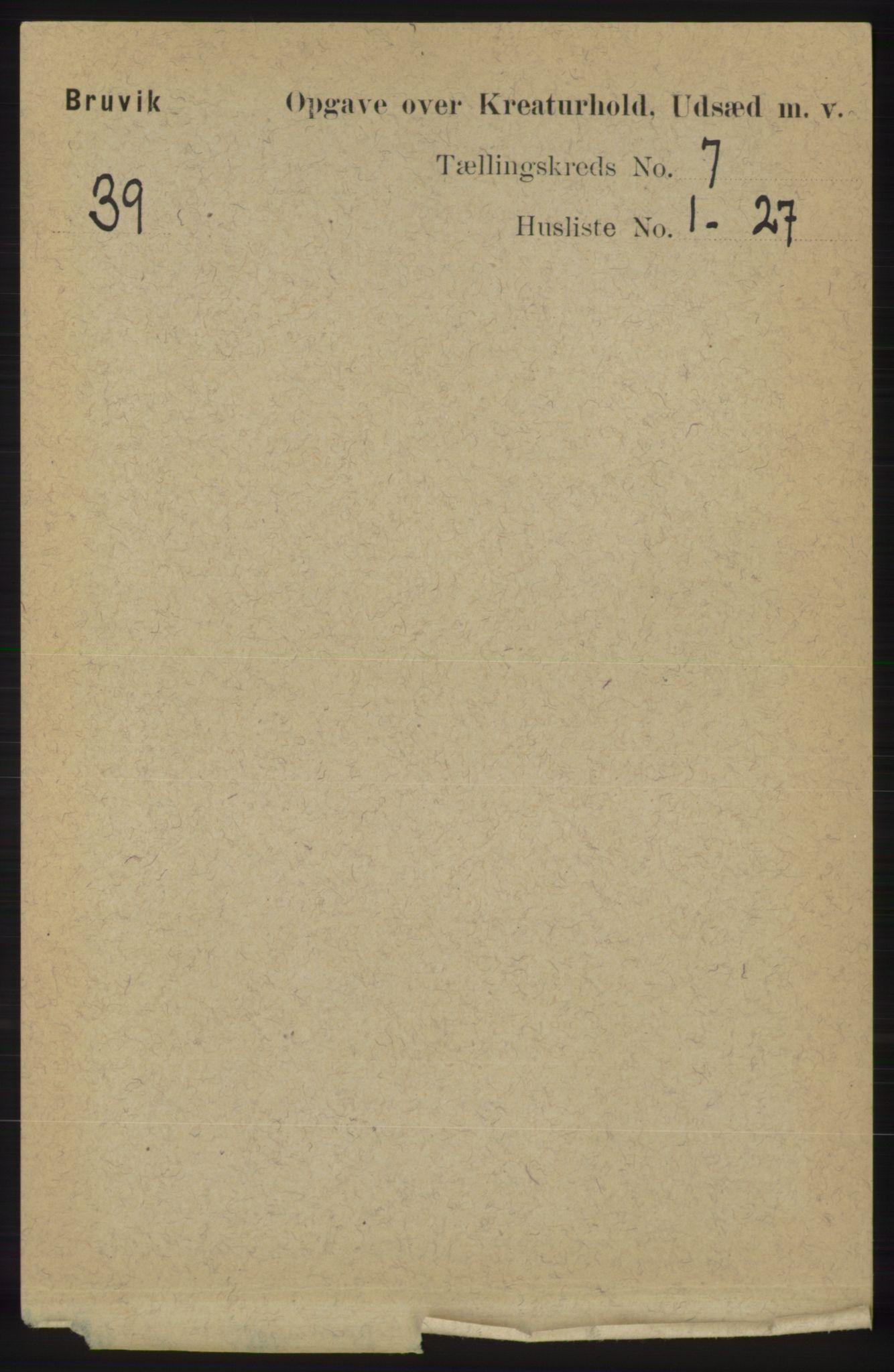 RA, Folketelling 1891 for 1251 Bruvik herred, 1891, s. 4628