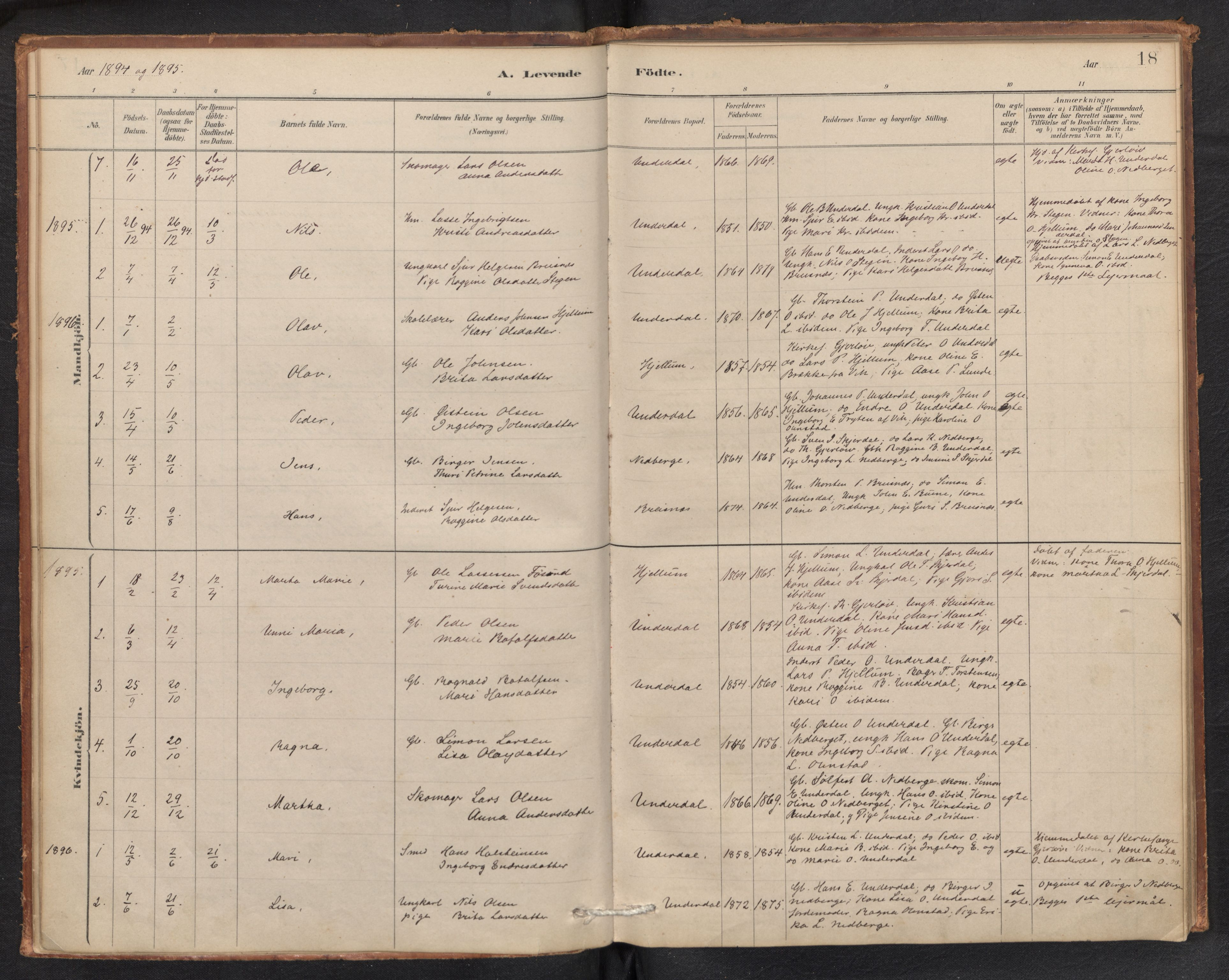 SAB, Aurland Sokneprestembete*, Ministerialbok nr. E 1, 1880-1907, s. 17b-18a