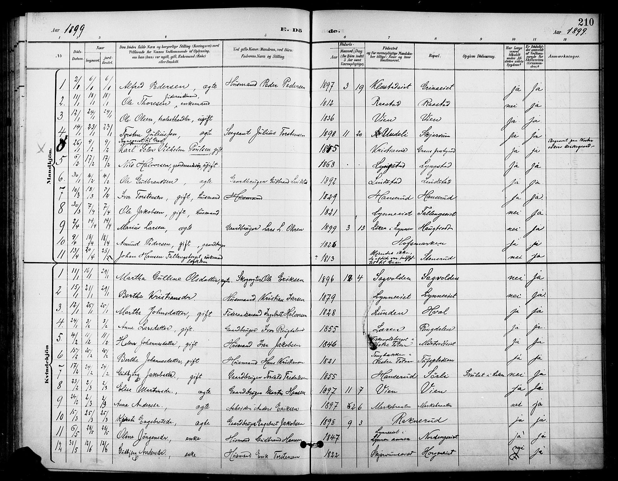 SAH, Gran prestekontor, Ministerialbok nr. 19, 1898-1907, s. 210