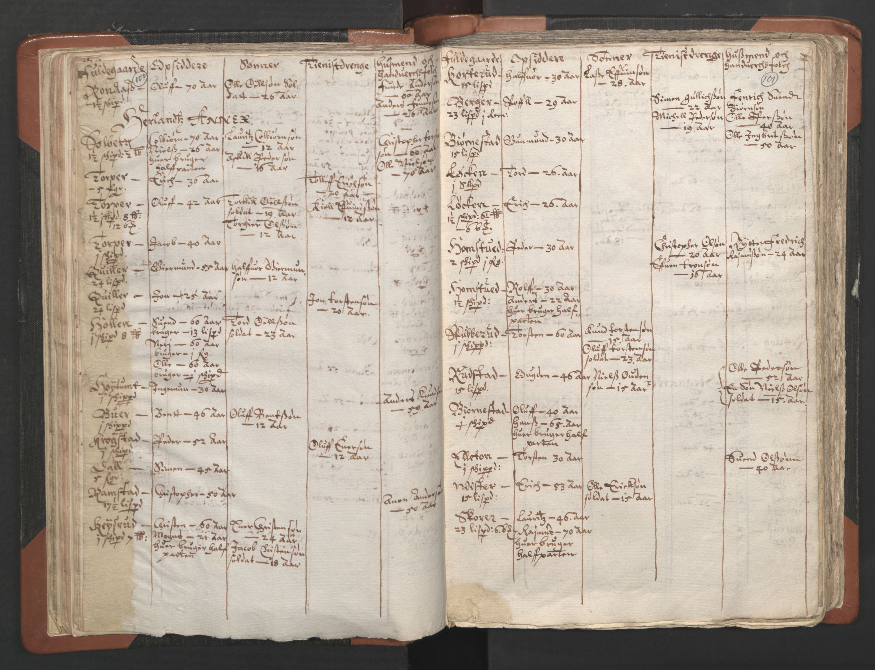 RA, Sogneprestenes manntall 1664-1666, nr. 2: Øvre Borgesyssel prosti, 1664-1666, s. 100-101