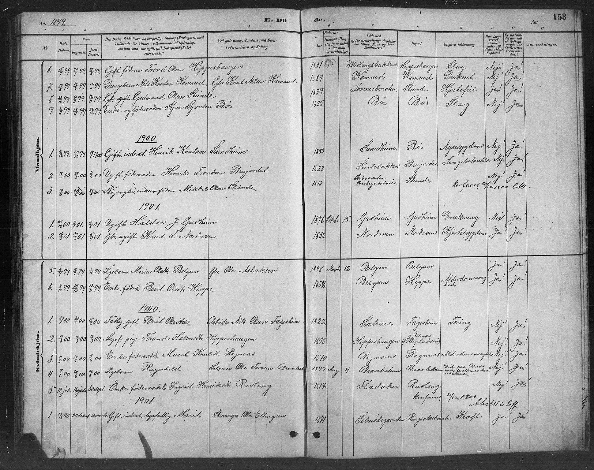 SAH, Nord-Aurdal prestekontor, Klokkerbok nr. 8, 1883-1916, s. 153