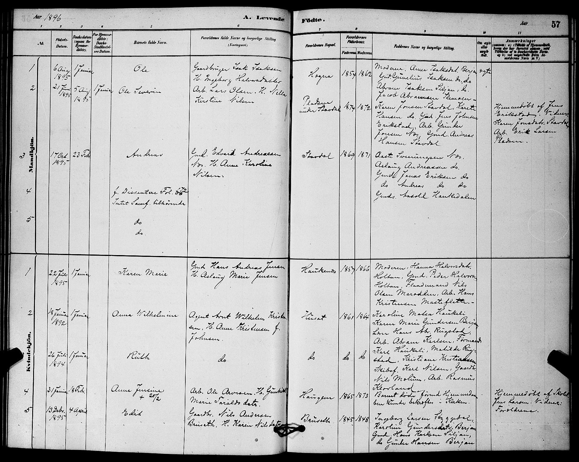 SAKO, Solum kirkebøker, G/Gb/L0003: Klokkerbok nr. II 3, 1880-1898, s. 57