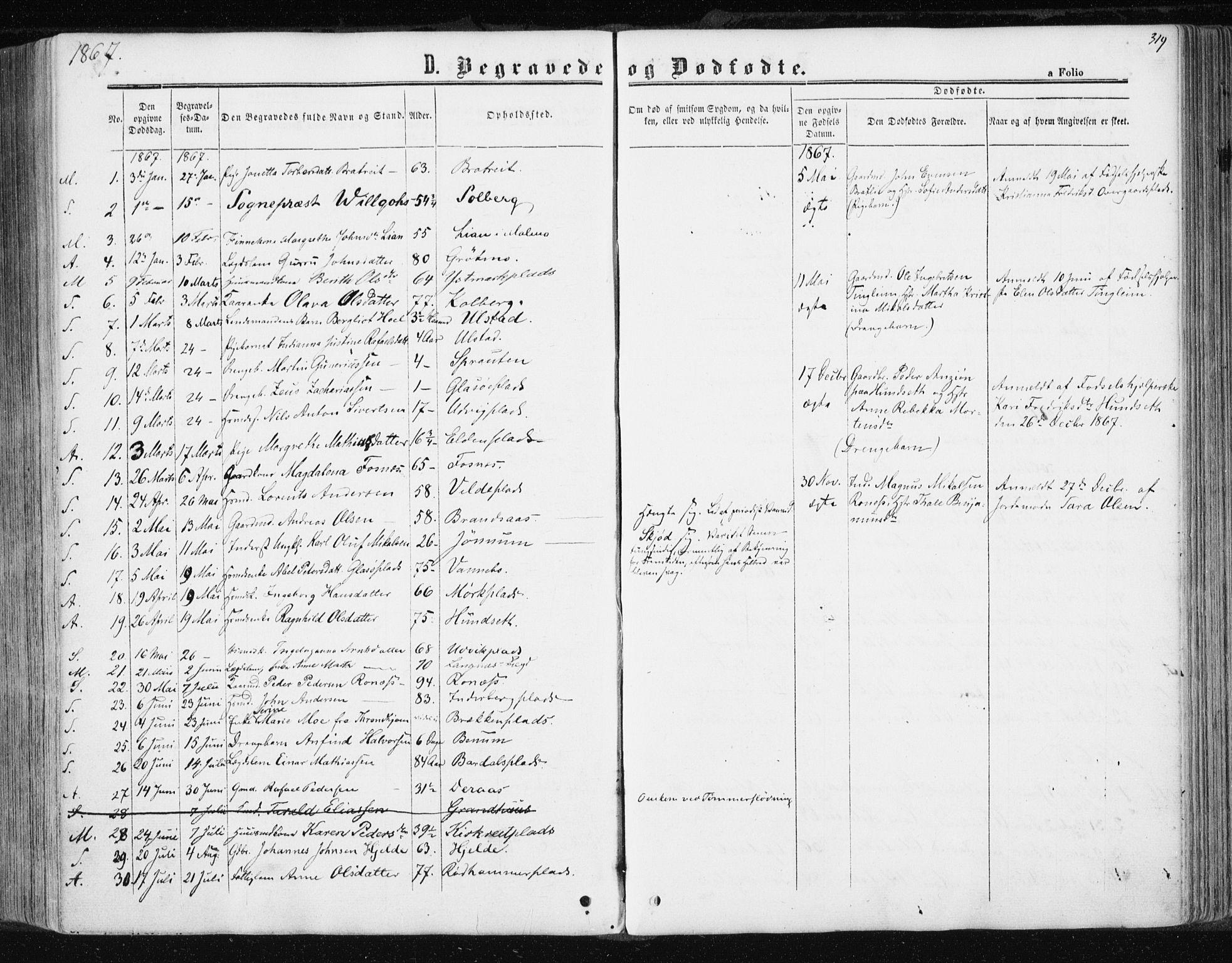 SAT, Ministerialprotokoller, klokkerbøker og fødselsregistre - Nord-Trøndelag, 741/L0394: Ministerialbok nr. 741A08, 1864-1877, s. 319