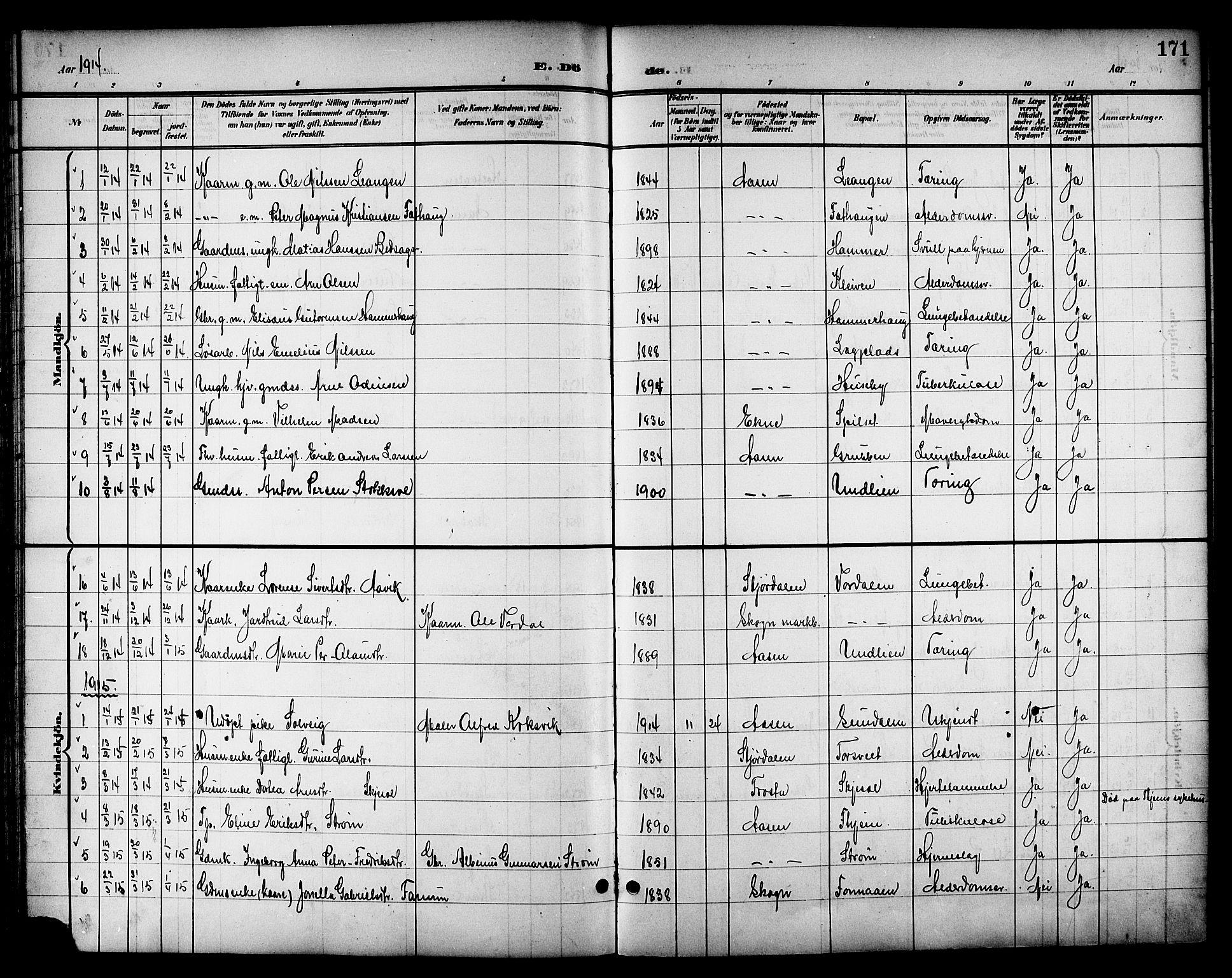 SAT, Ministerialprotokoller, klokkerbøker og fødselsregistre - Nord-Trøndelag, 714/L0135: Klokkerbok nr. 714C04, 1899-1918, s. 171