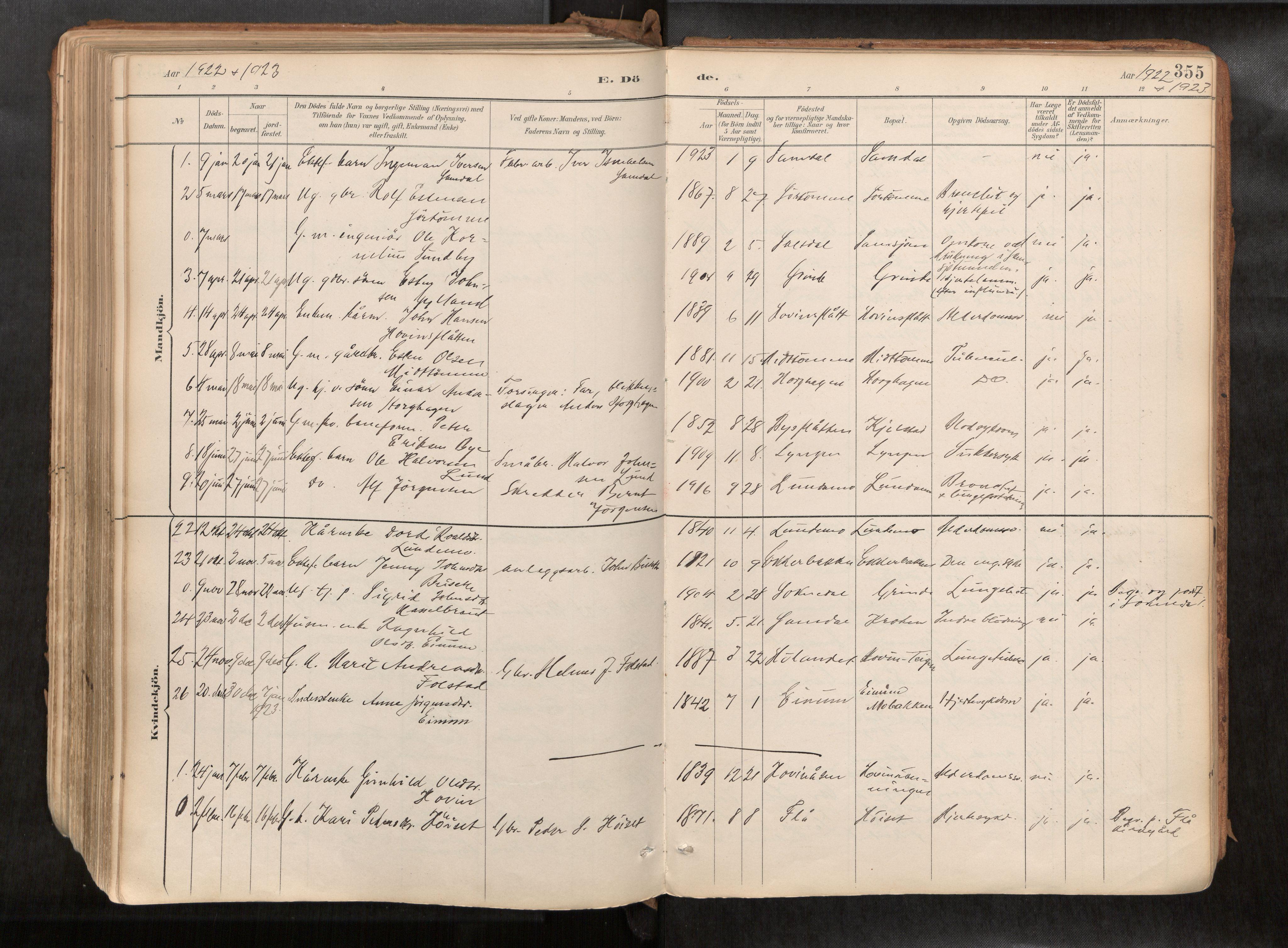 SAT, Ministerialprotokoller, klokkerbøker og fødselsregistre - Sør-Trøndelag, 692/L1105b: Ministerialbok nr. 692A06, 1891-1934, s. 355