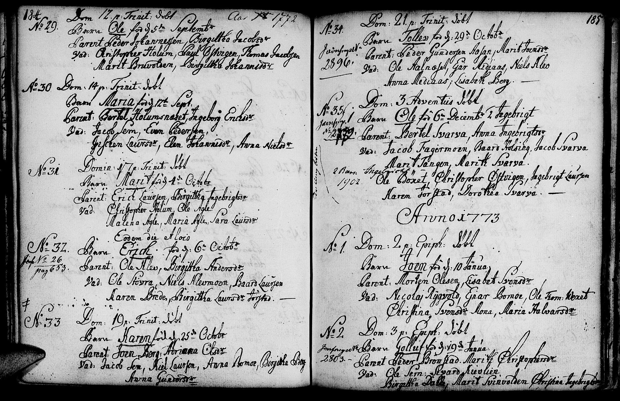 SAT, Ministerialprotokoller, klokkerbøker og fødselsregistre - Nord-Trøndelag, 749/L0467: Ministerialbok nr. 749A01, 1733-1787, s. 184-185