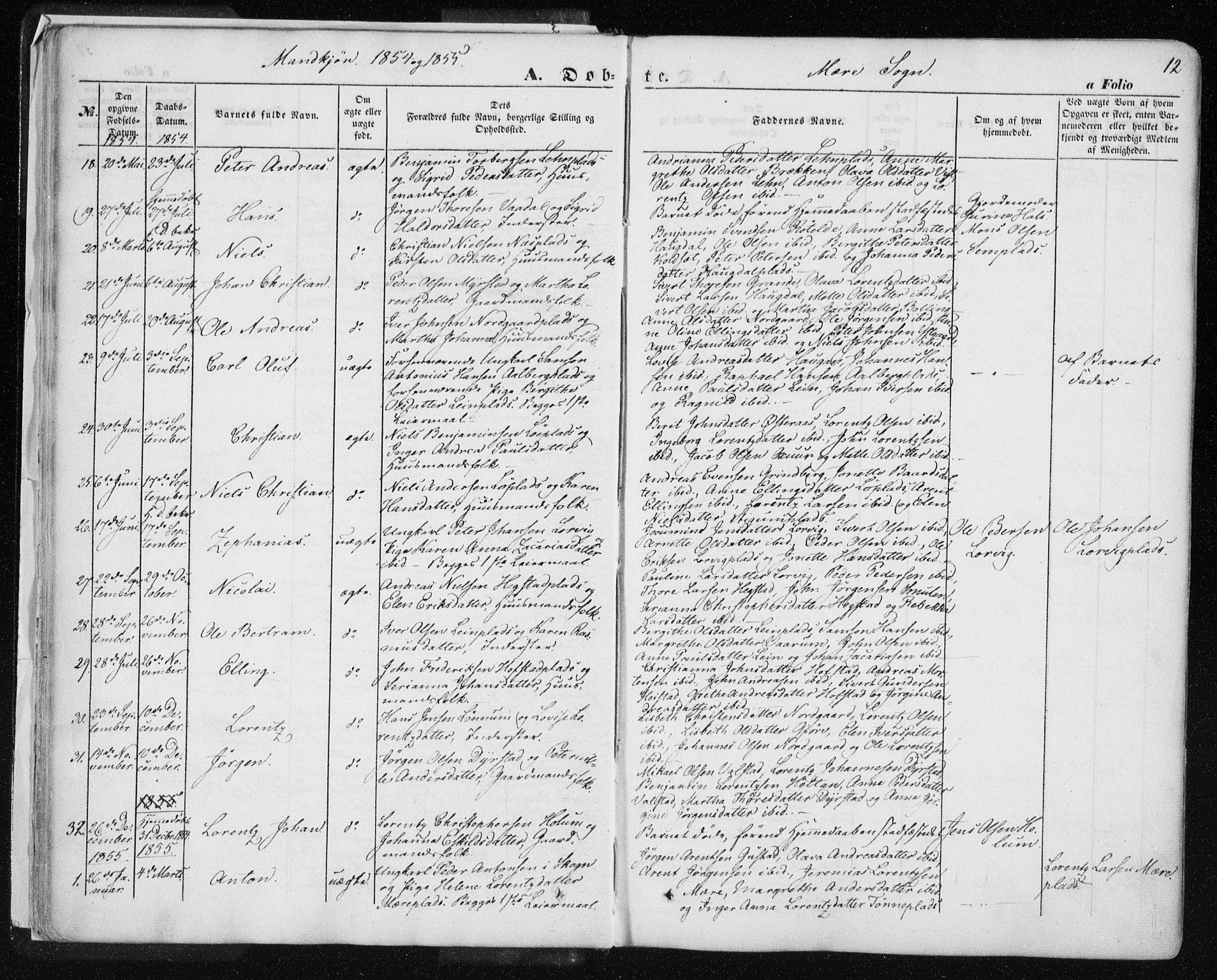 SAT, Ministerialprotokoller, klokkerbøker og fødselsregistre - Nord-Trøndelag, 735/L0342: Ministerialbok nr. 735A07 /1, 1849-1862, s. 12