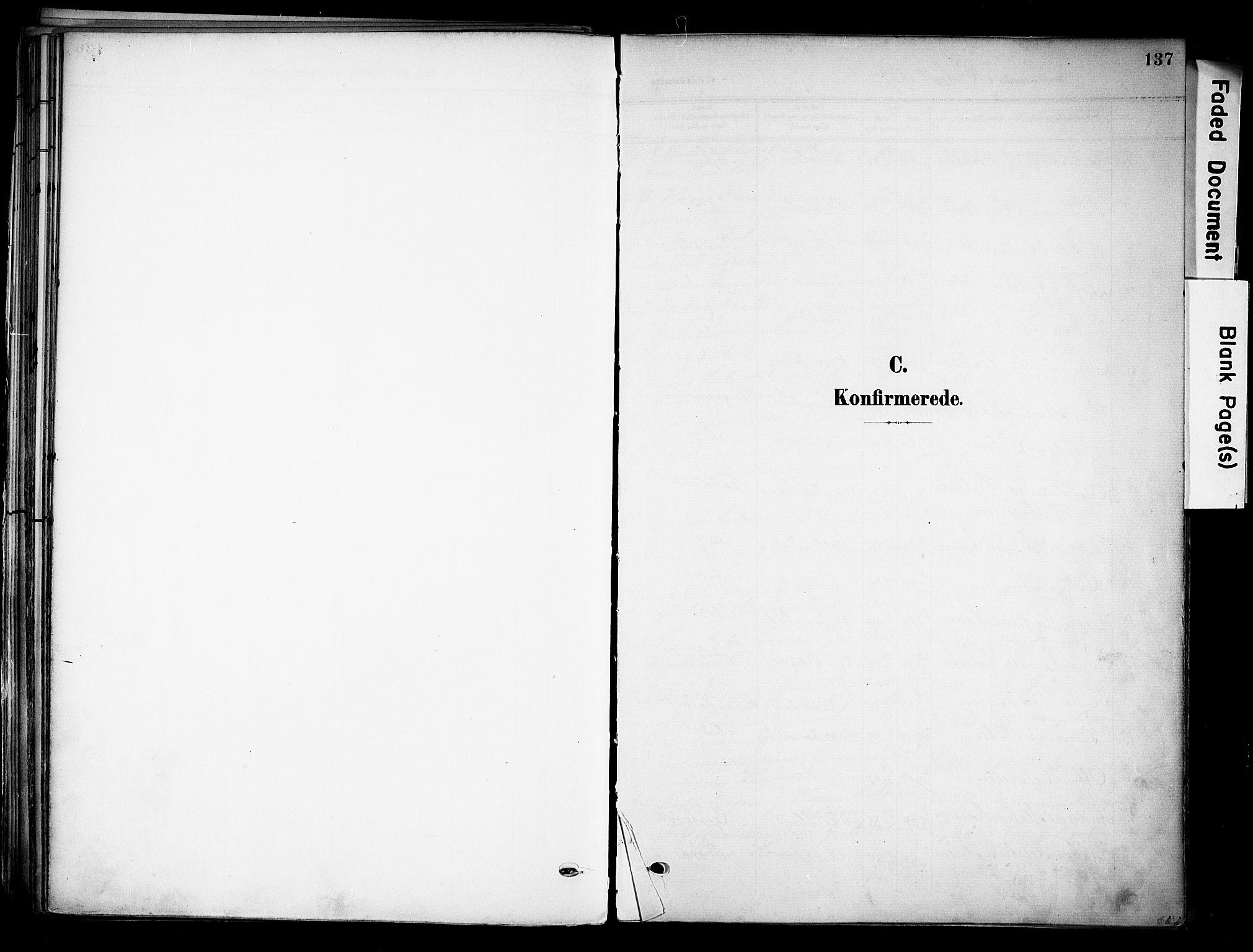 SAKO, Solum kirkebøker, F/Fa/L0011: Ministerialbok nr. I 11, 1898-1909, s. 137