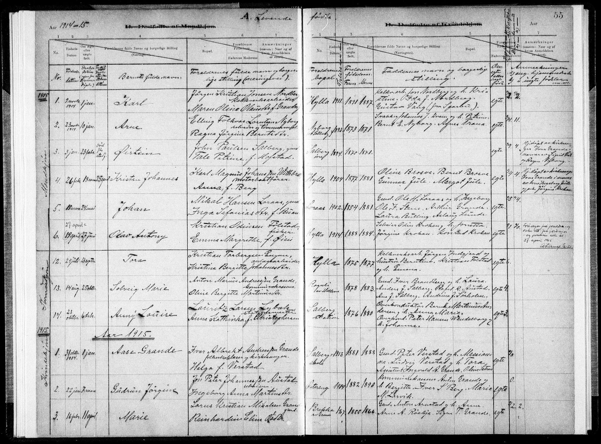 SAT, Ministerialprotokoller, klokkerbøker og fødselsregistre - Nord-Trøndelag, 731/L0309: Ministerialbok nr. 731A01, 1879-1918, s. 55