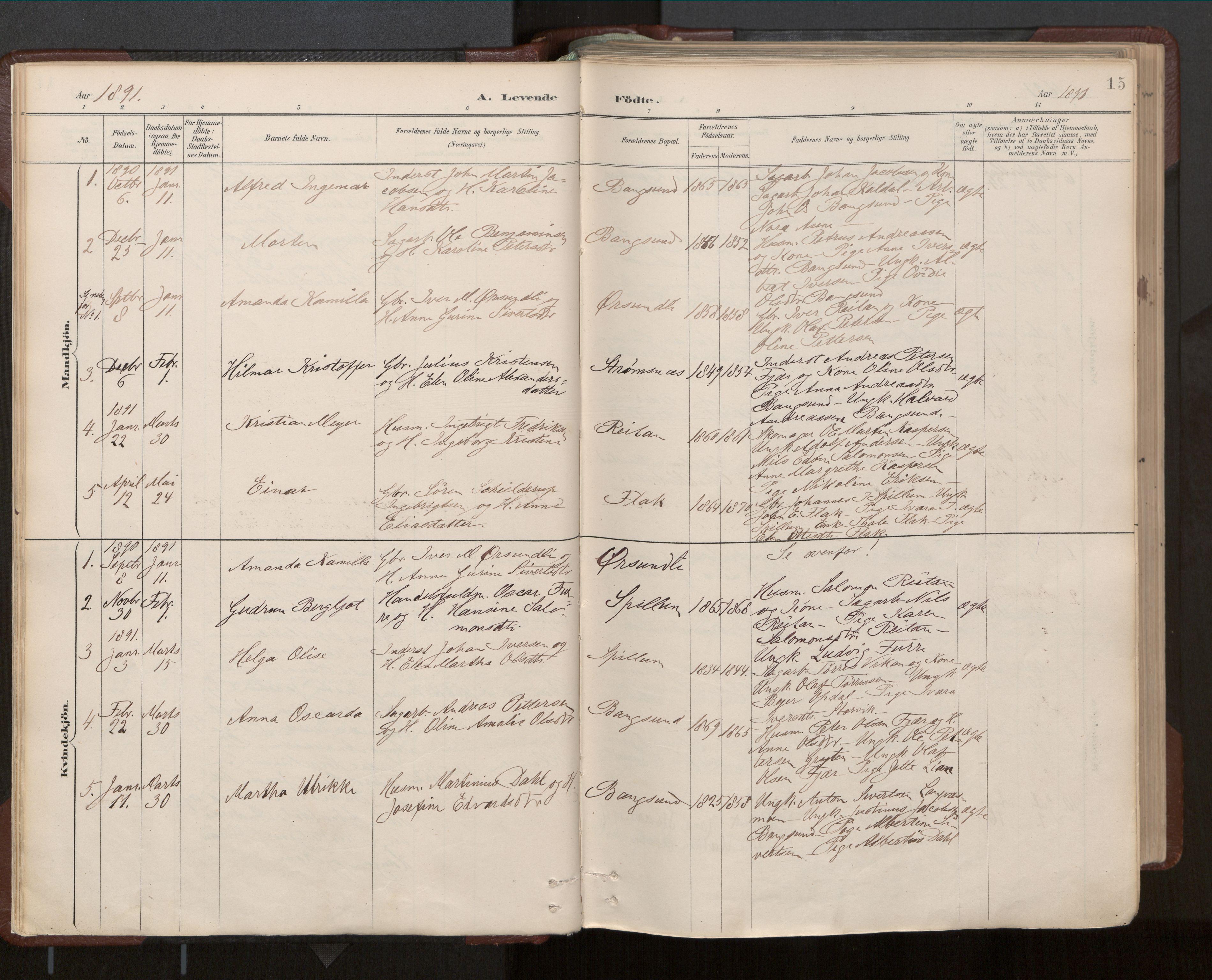 SAT, Ministerialprotokoller, klokkerbøker og fødselsregistre - Nord-Trøndelag, 770/L0589: Ministerialbok nr. 770A03, 1887-1929, s. 15
