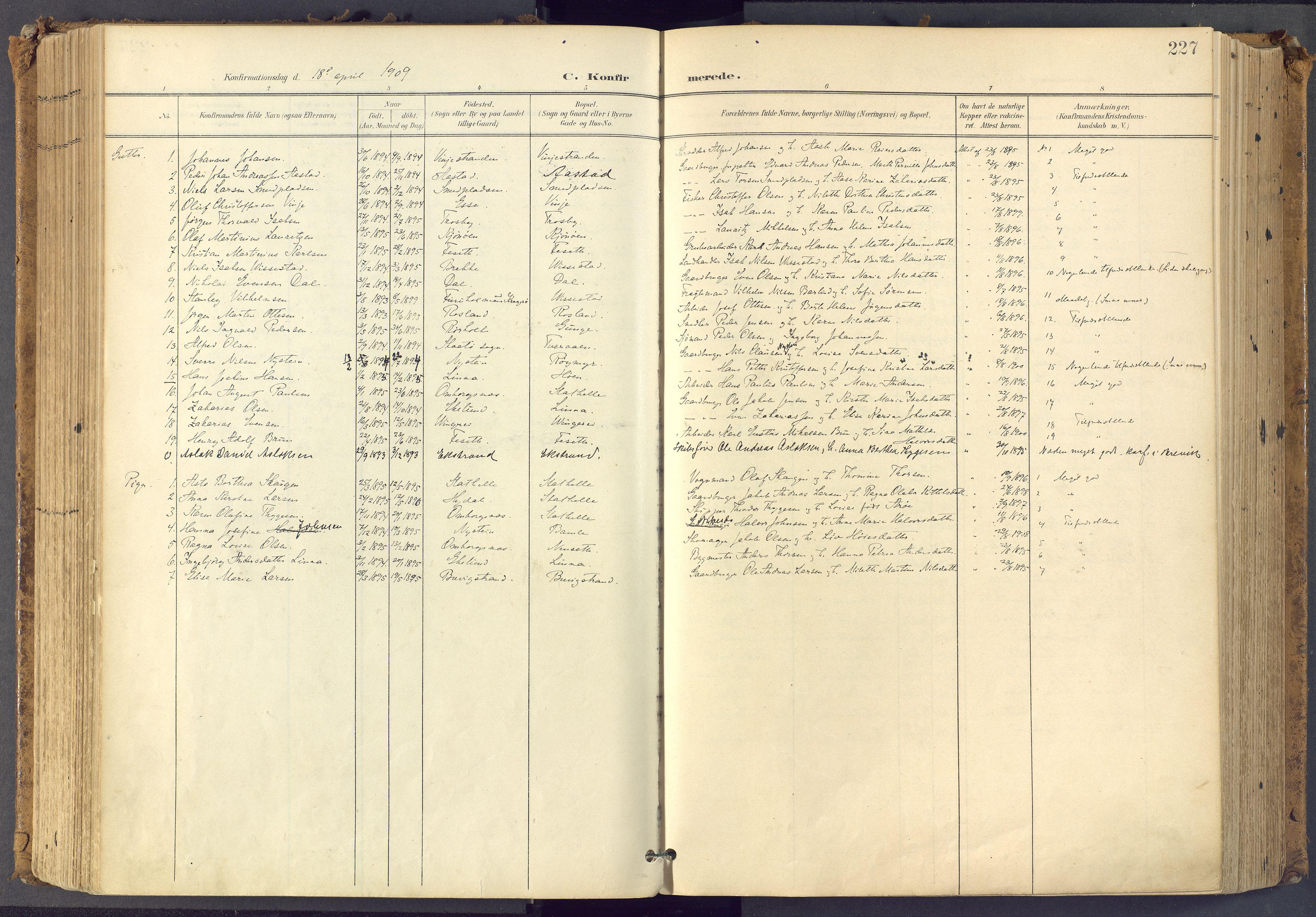 SAKO, Bamble kirkebøker, F/Fa/L0009: Ministerialbok nr. I 9, 1901-1917, s. 227