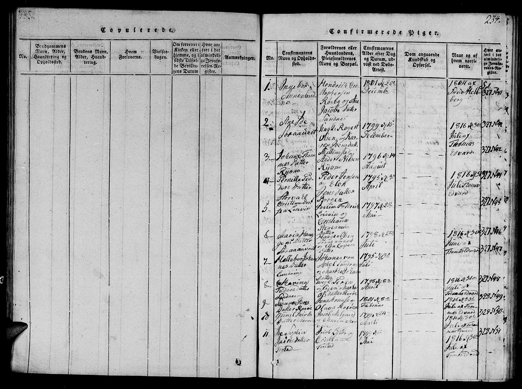SAT, Ministerialprotokoller, klokkerbøker og fødselsregistre - Nord-Trøndelag, 784/L0679: Klokkerbok nr. 784C01 /1, 1816-1822, s. 234