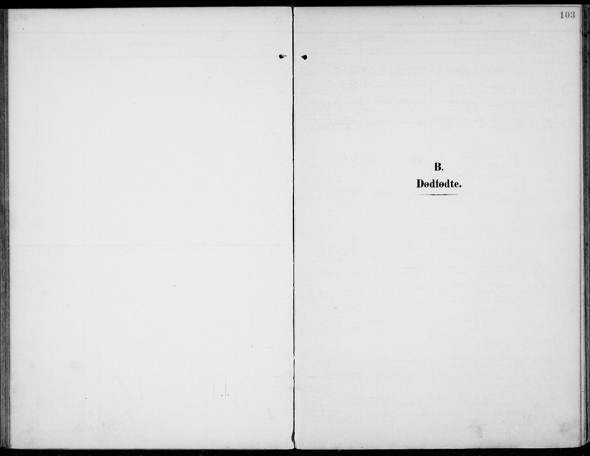 SAH, Jevnaker prestekontor, Ministerialbok nr. 11, 1902-1913, s. 103