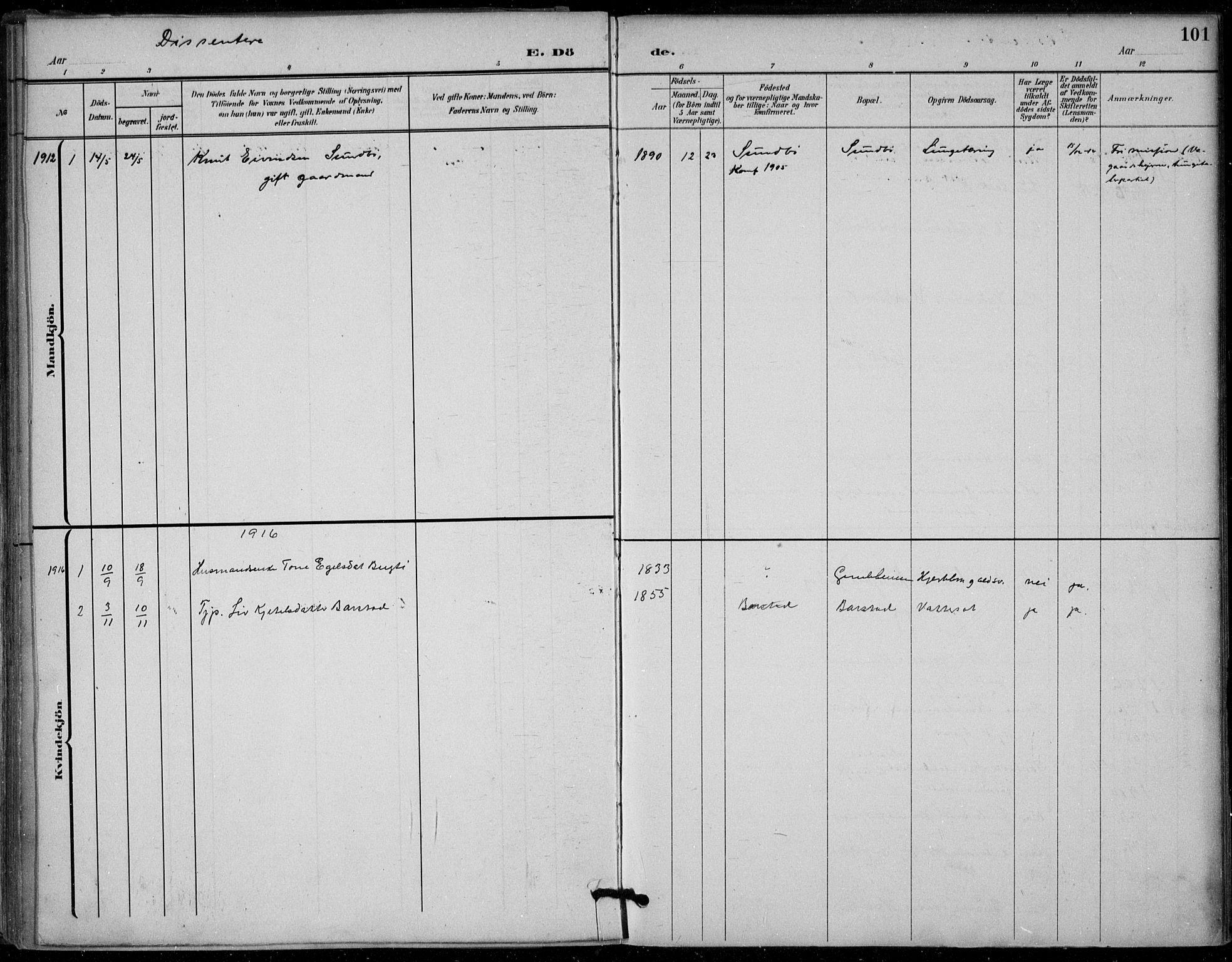 SAKO, Seljord kirkebøker, F/Fb/L0002: Ministerialbok nr. II 2, 1887-1917, s. 101