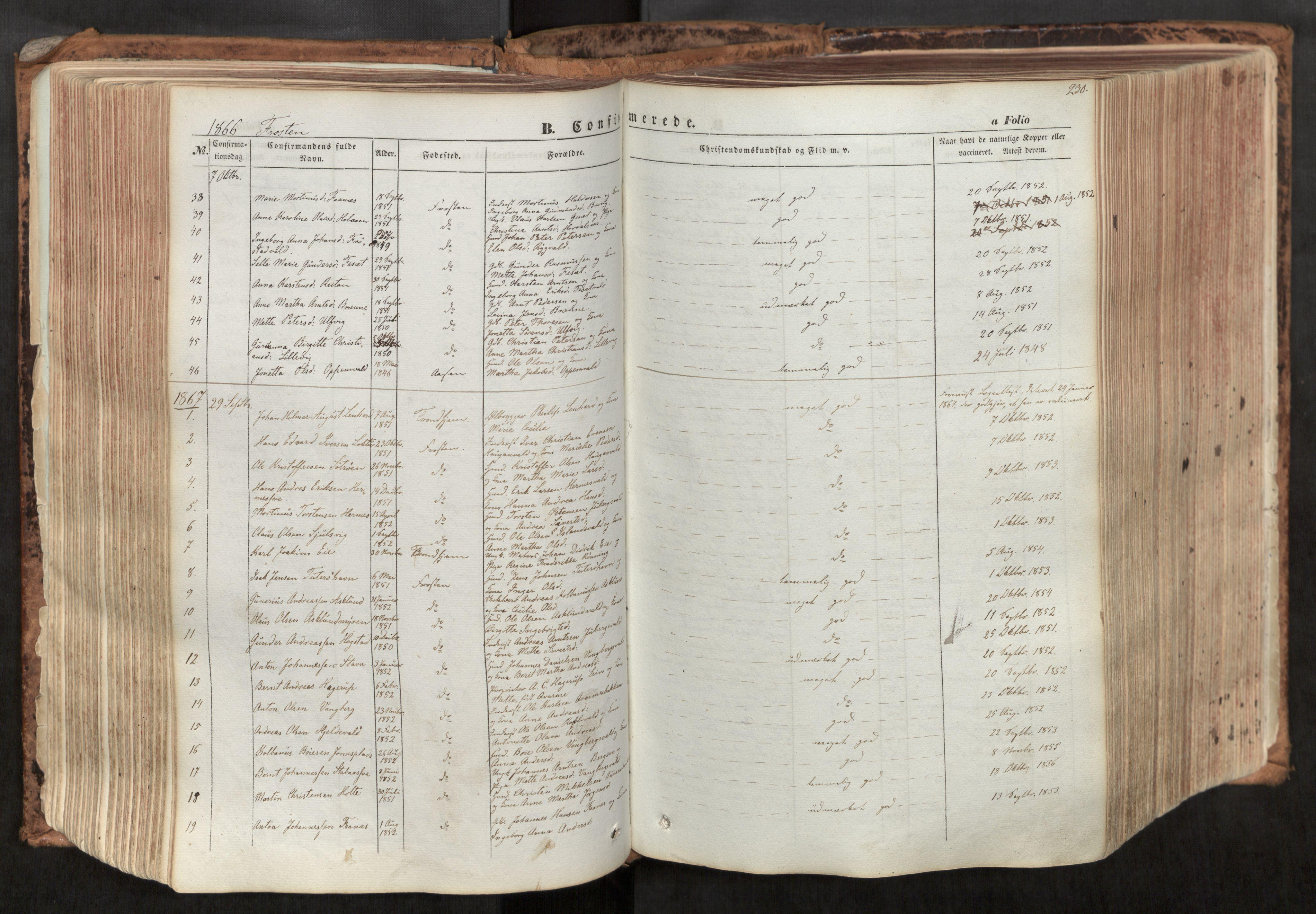 SAT, Ministerialprotokoller, klokkerbøker og fødselsregistre - Nord-Trøndelag, 713/L0116: Ministerialbok nr. 713A07, 1850-1877, s. 230