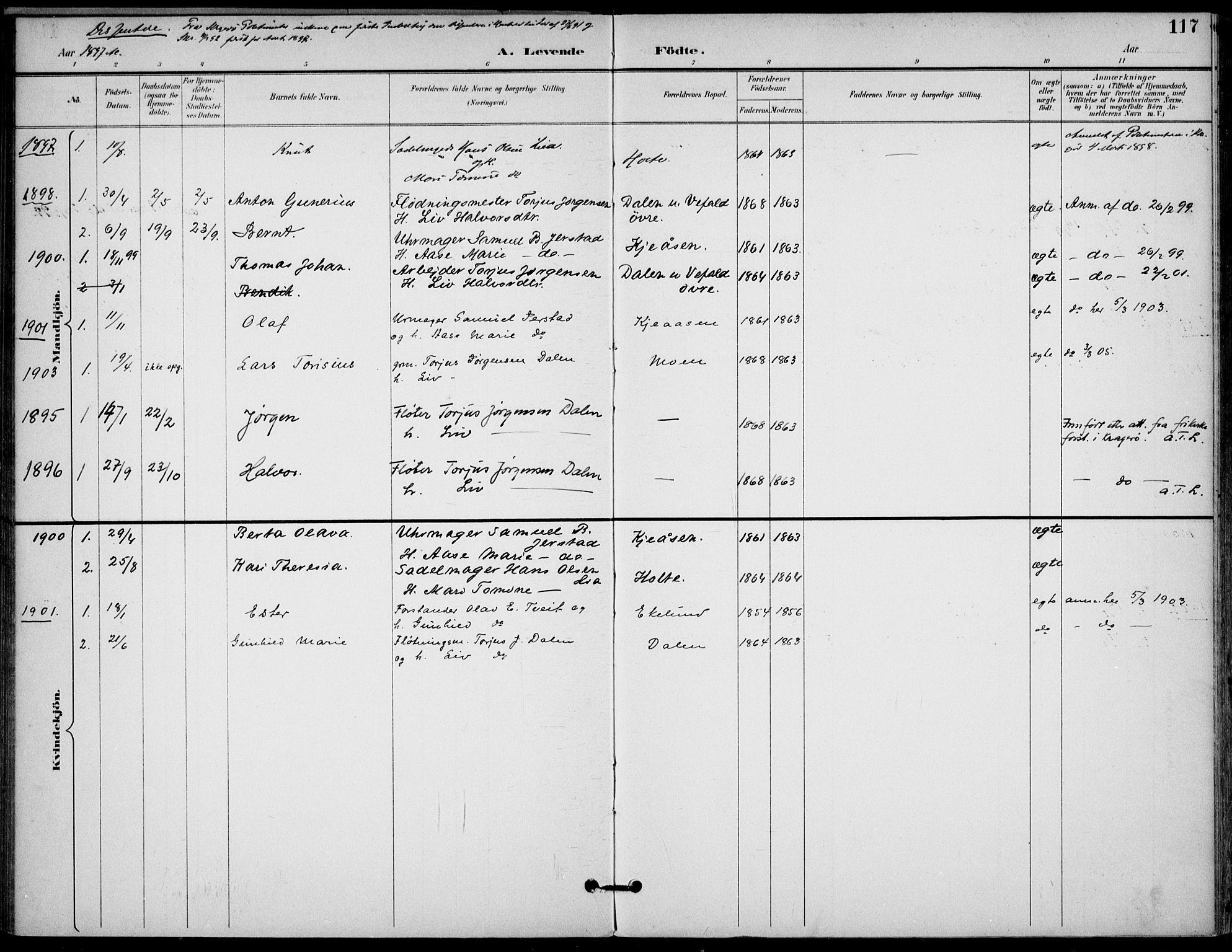 SAKO, Drangedal kirkebøker, F/Fa/L0012: Ministerialbok nr. 12, 1895-1905, s. 117