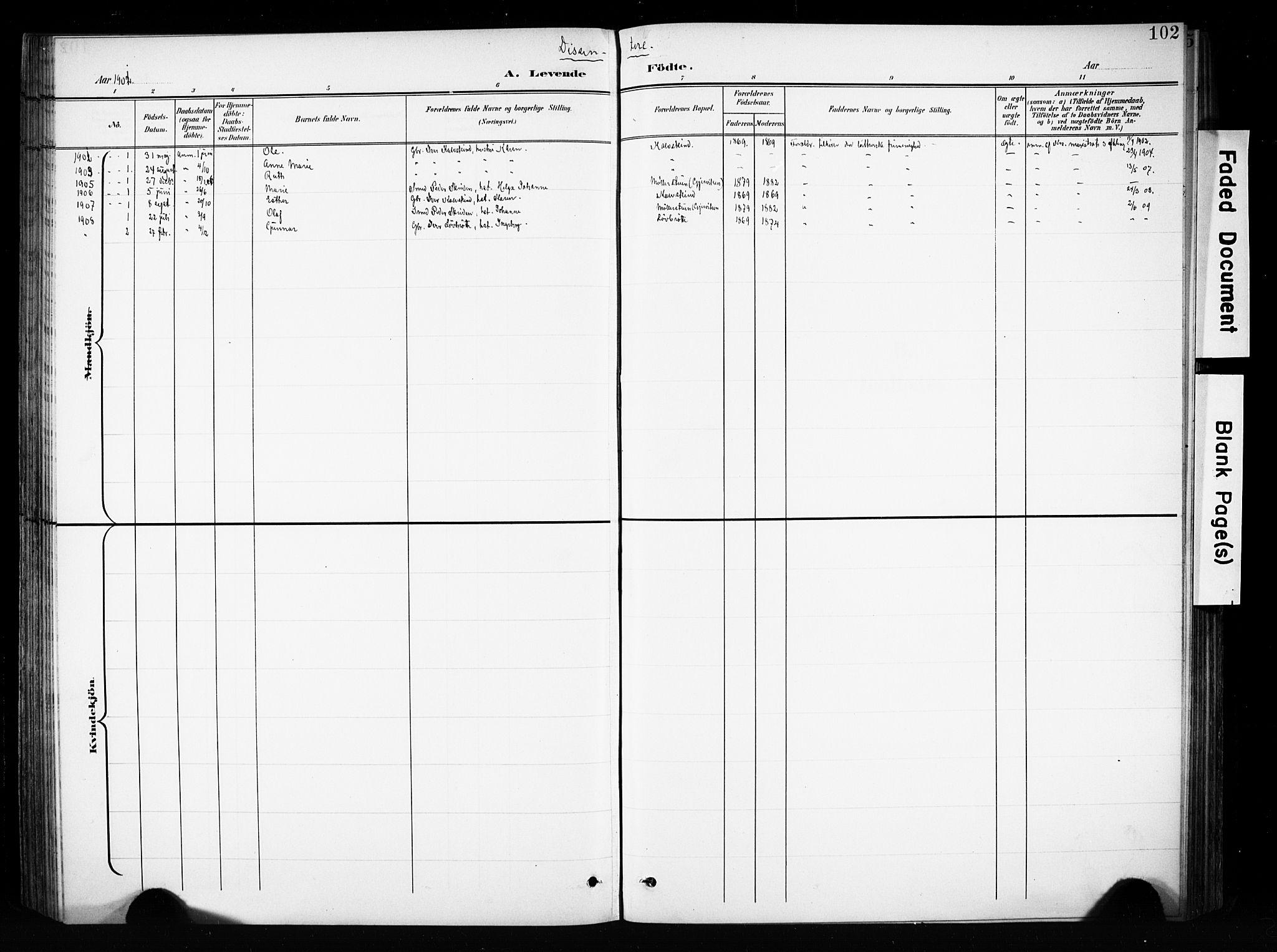 SAH, Brandbu prestekontor, Ministerialbok nr. 1, 1900-1912, s. 102