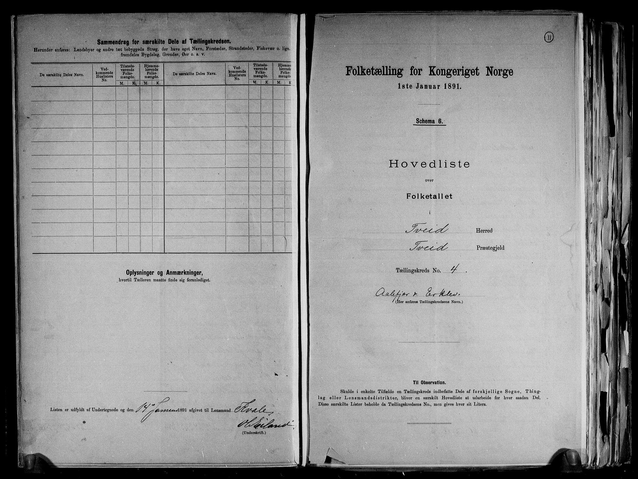 RA, Folketelling 1891 for 1013 Tveit herred, 1891, s. 11