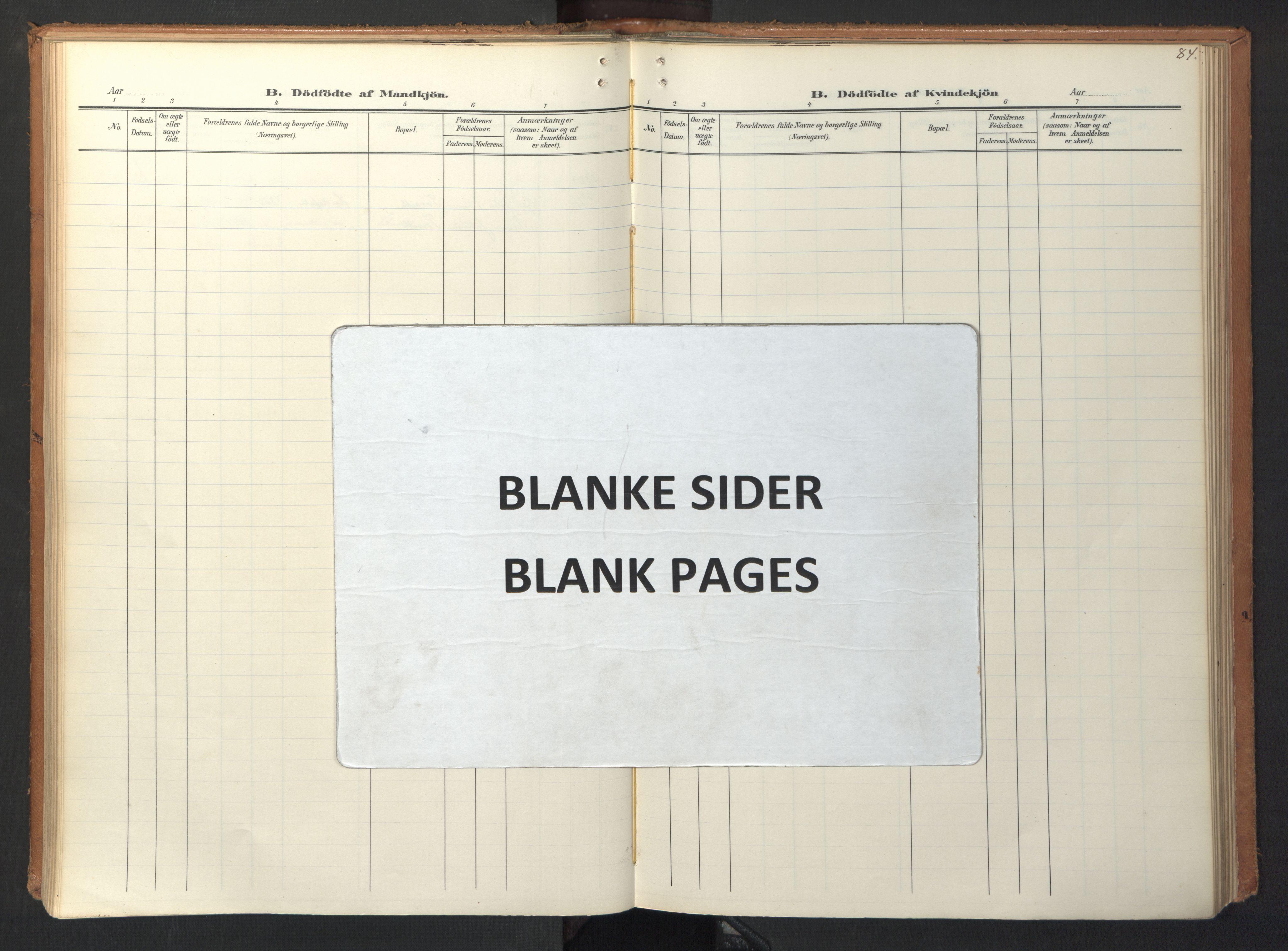 SAT, Ministerialprotokoller, klokkerbøker og fødselsregistre - Sør-Trøndelag, 694/L1128: Ministerialbok nr. 694A02, 1906-1931, s. 84