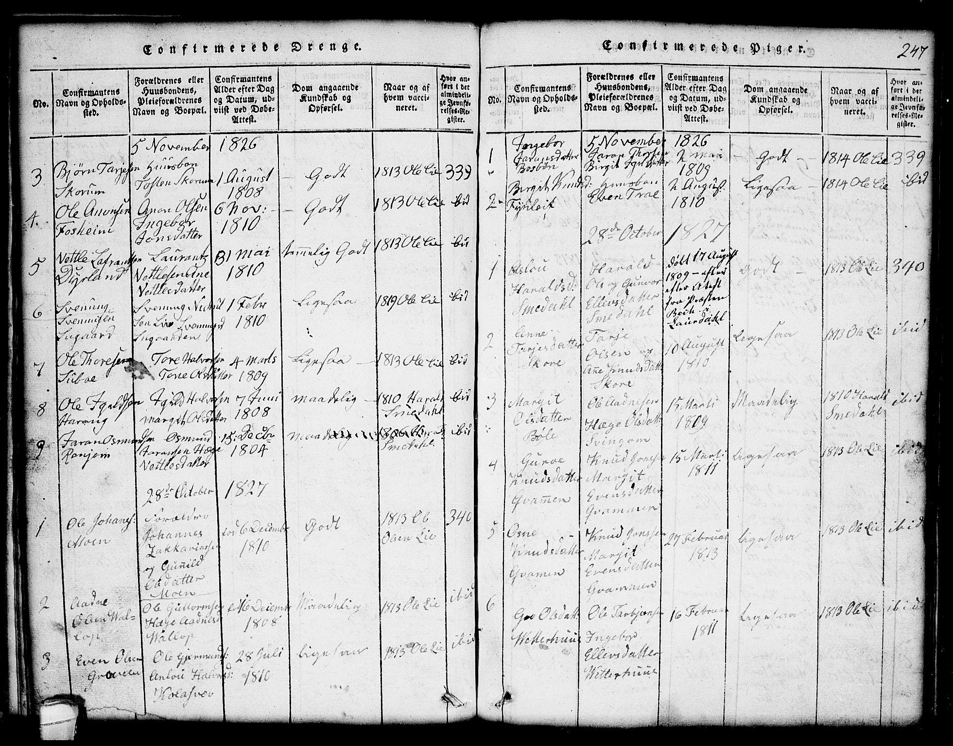SAKO, Seljord kirkebøker, G/Gc/L0001: Klokkerbok nr. III 1, 1815-1849, s. 247