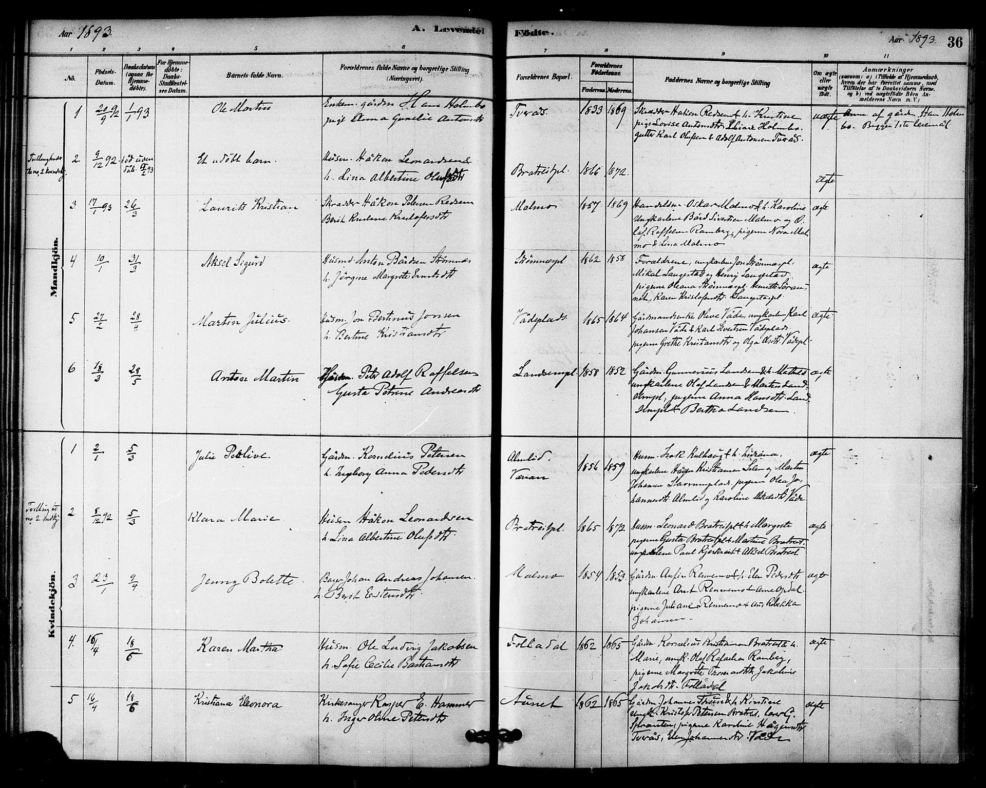 SAT, Ministerialprotokoller, klokkerbøker og fødselsregistre - Nord-Trøndelag, 745/L0429: Ministerialbok nr. 745A01, 1878-1894, s. 36