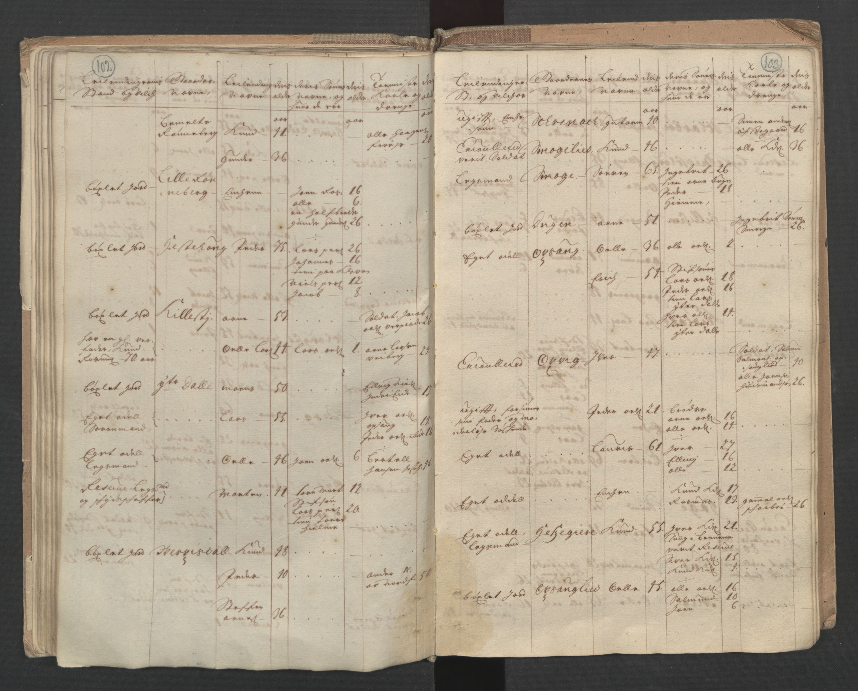 RA, Manntallet 1701, nr. 10: Sunnmøre fogderi, 1701, s. 102-103