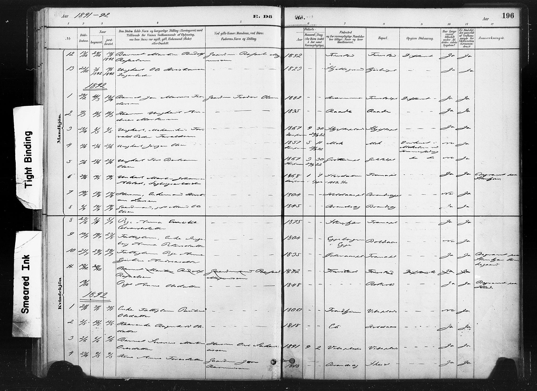 SAT, Ministerialprotokoller, klokkerbøker og fødselsregistre - Nord-Trøndelag, 736/L0361: Ministerialbok nr. 736A01, 1884-1906, s. 196
