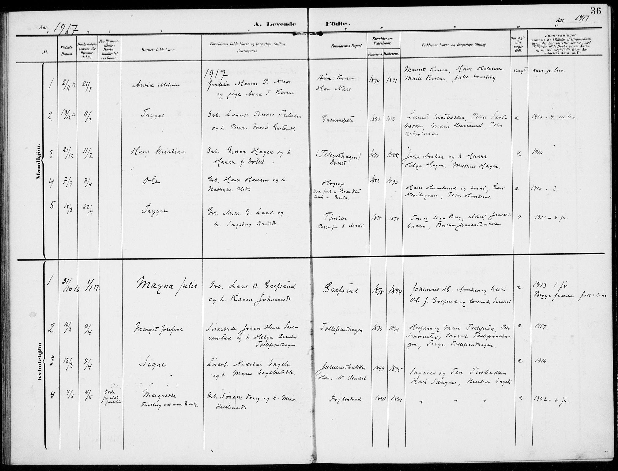 SAH, Kolbu prestekontor, Ministerialbok nr. 1, 1907-1923, s. 36