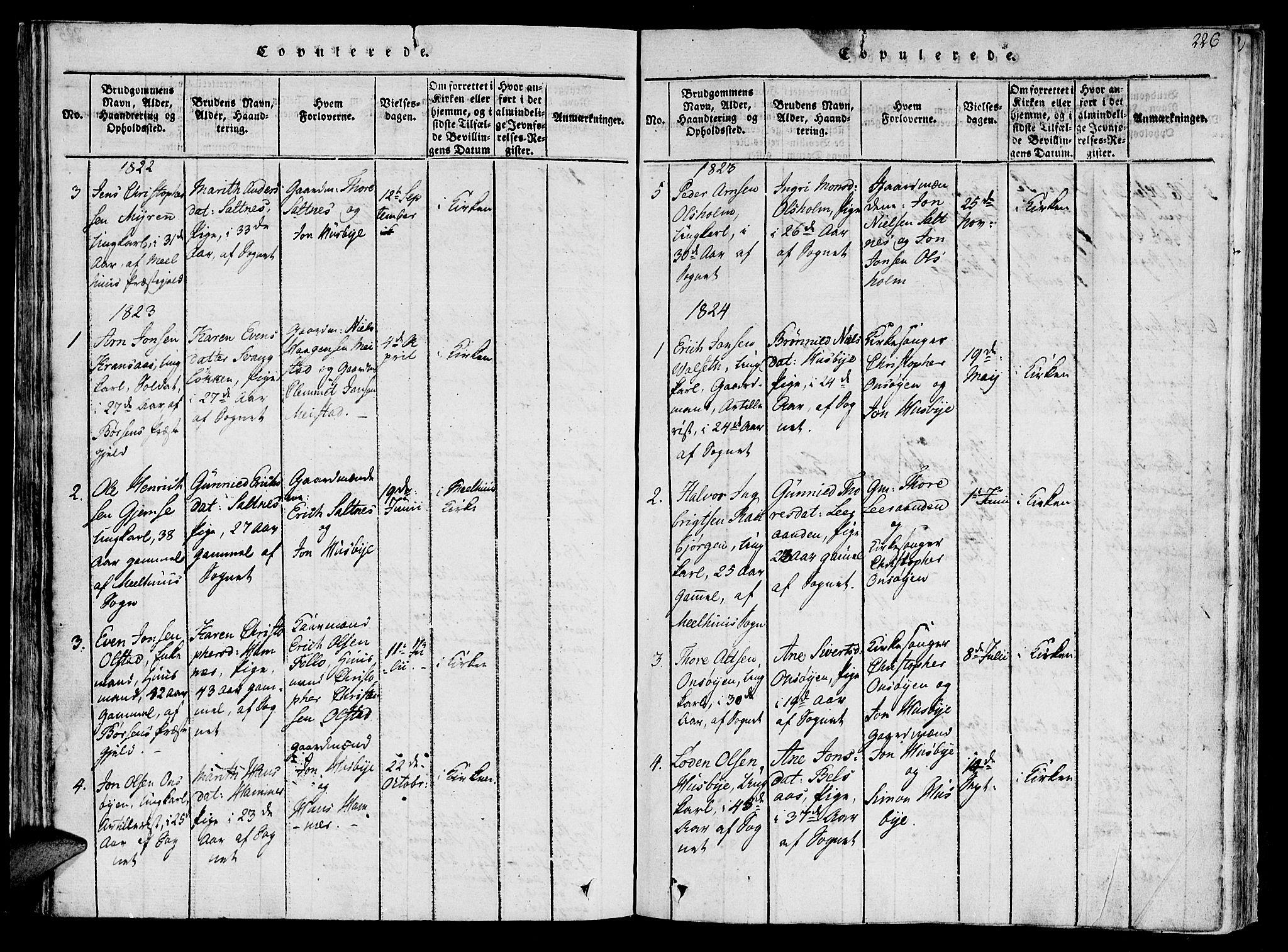 SAT, Ministerialprotokoller, klokkerbøker og fødselsregistre - Sør-Trøndelag, 612/L0373: Ministerialbok nr. 612A06 /2, 1816-1828, s. 226