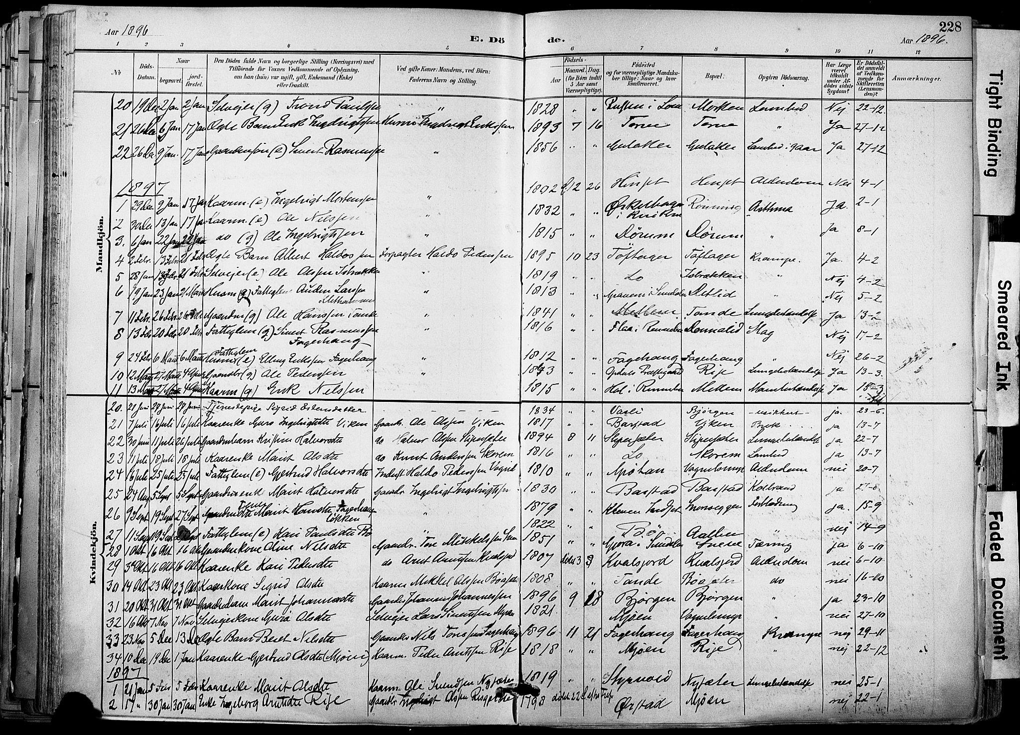SAT, Ministerialprotokoller, klokkerbøker og fødselsregistre - Sør-Trøndelag, 678/L0902: Ministerialbok nr. 678A11, 1895-1911, s. 228