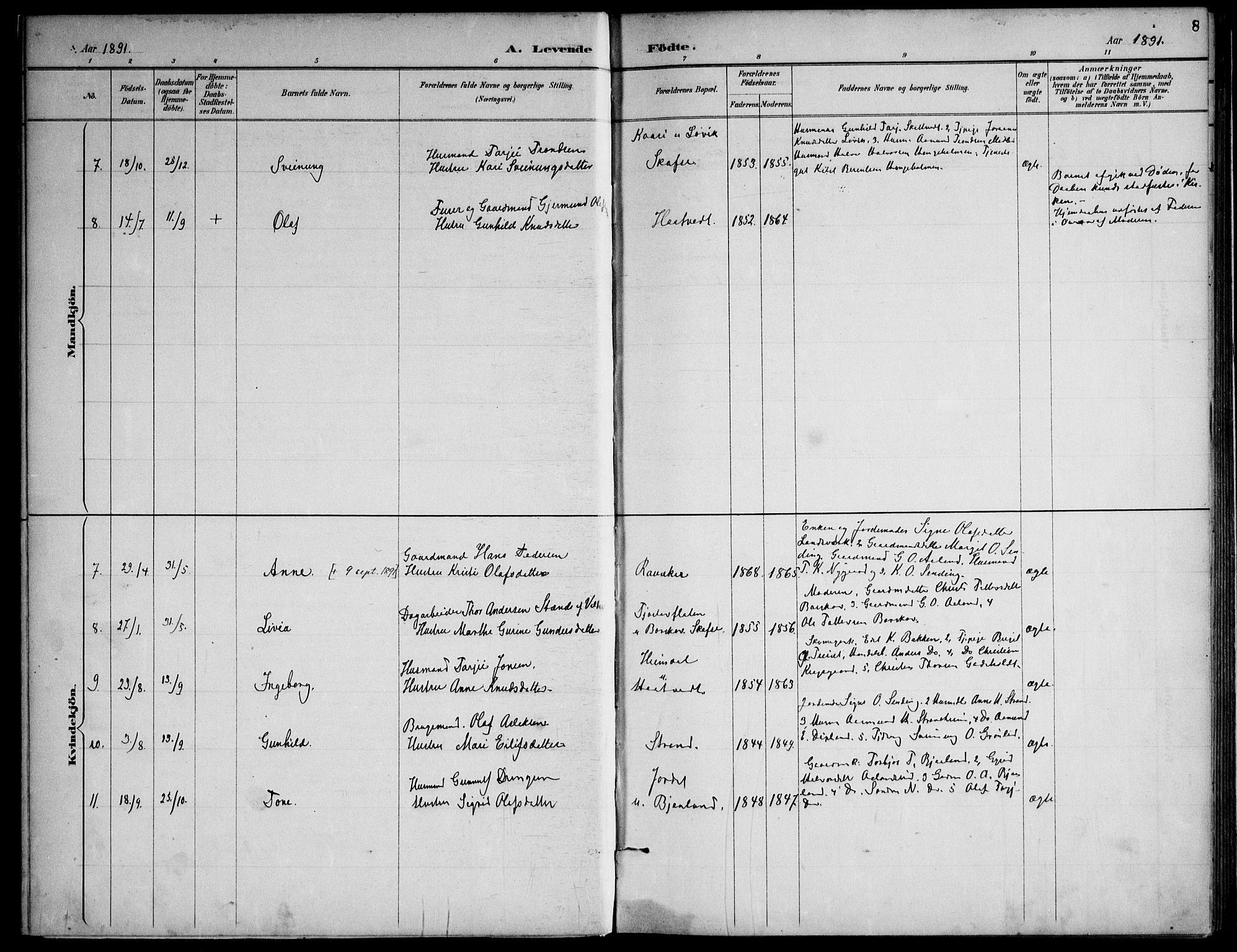 SAKO, Lårdal kirkebøker, F/Fa/L0007: Ministerialbok nr. I 7, 1887-1906, s. 8