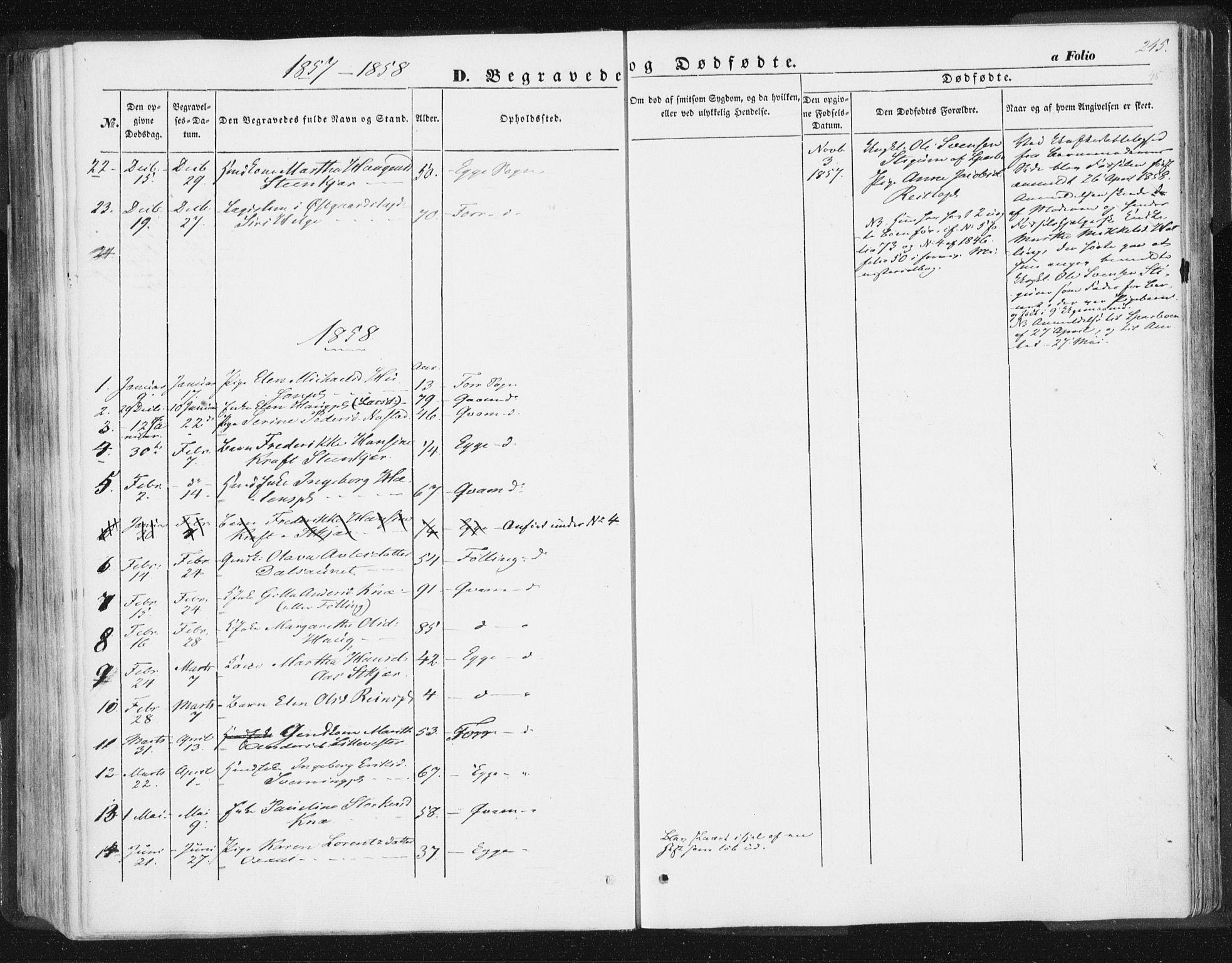 SAT, Ministerialprotokoller, klokkerbøker og fødselsregistre - Nord-Trøndelag, 746/L0446: Ministerialbok nr. 746A05, 1846-1859, s. 245