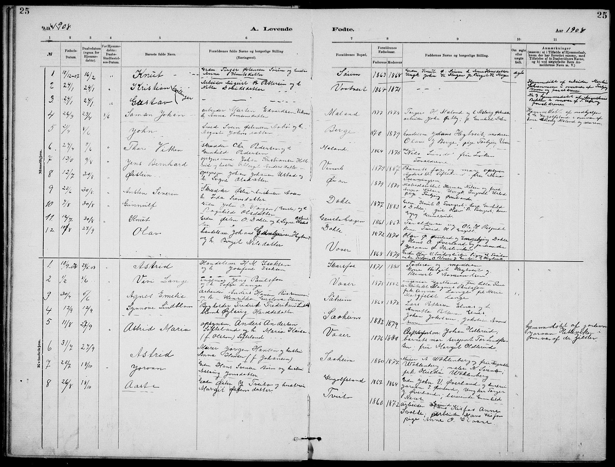 SAKO, Rjukan kirkebøker, G/Ga/L0001: Klokkerbok nr. 1, 1880-1914, s. 25