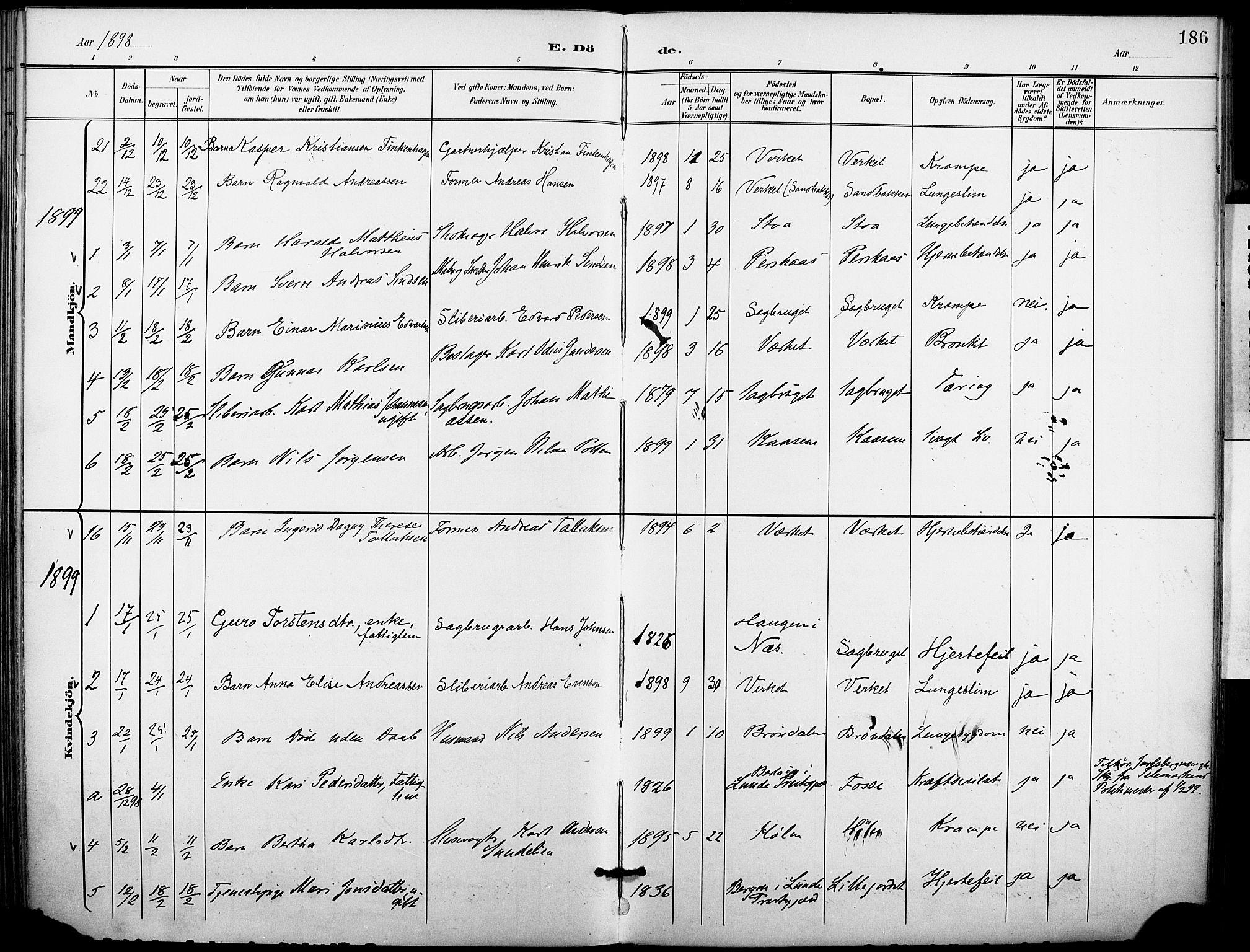 SAKO, Holla kirkebøker, F/Fa/L0010: Ministerialbok nr. 10, 1897-1907, s. 186