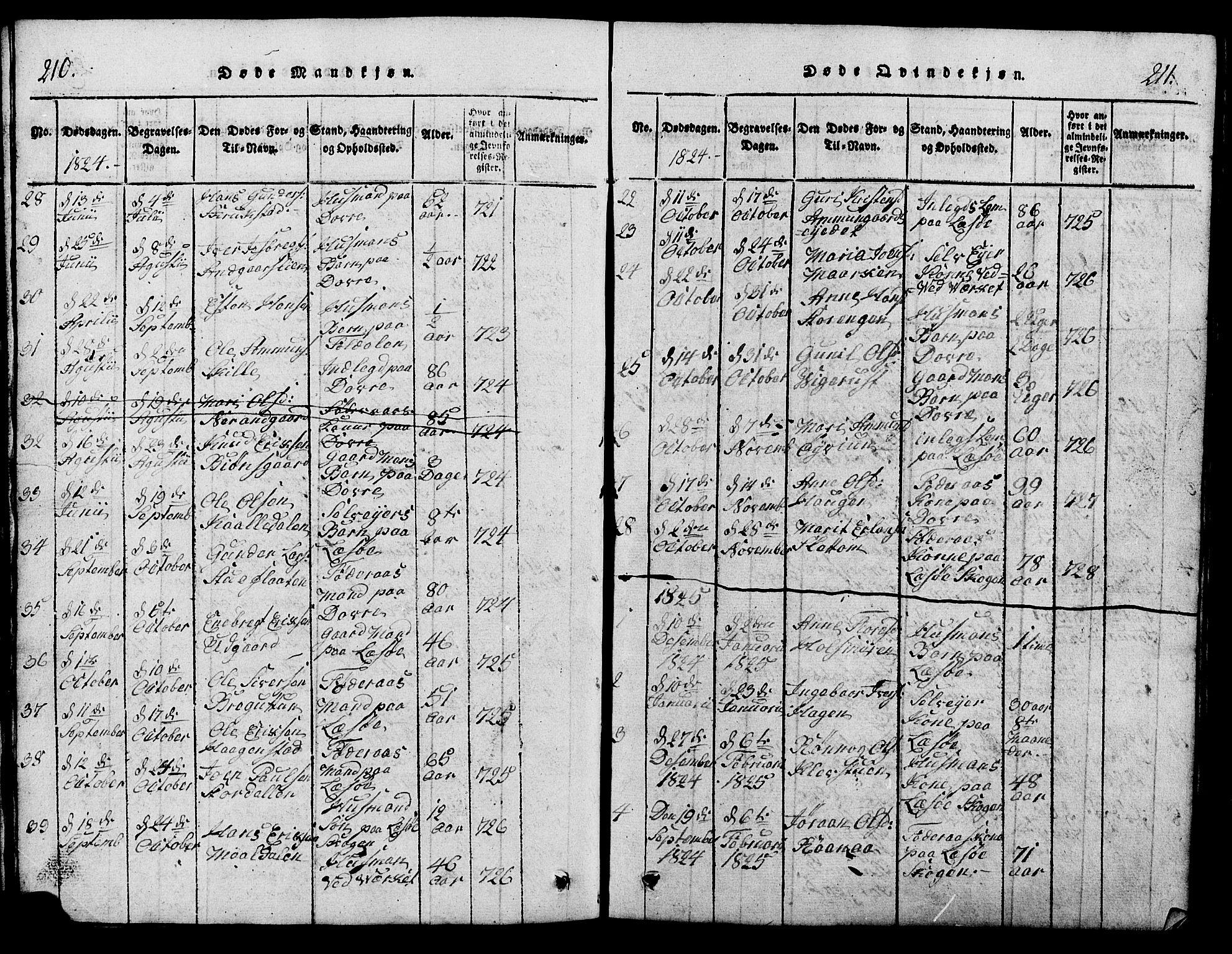 SAH, Lesja prestekontor, Klokkerbok nr. 1, 1820-1831, s. 210-211